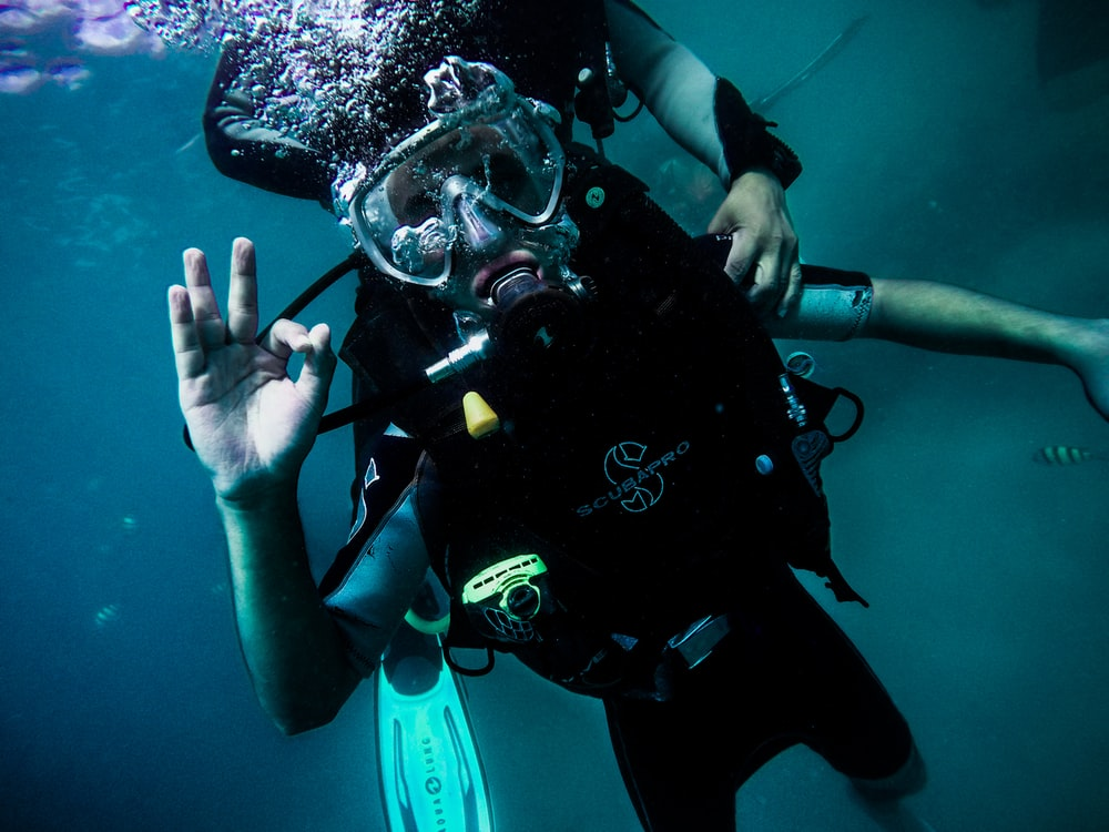 person wearing diving suit under water