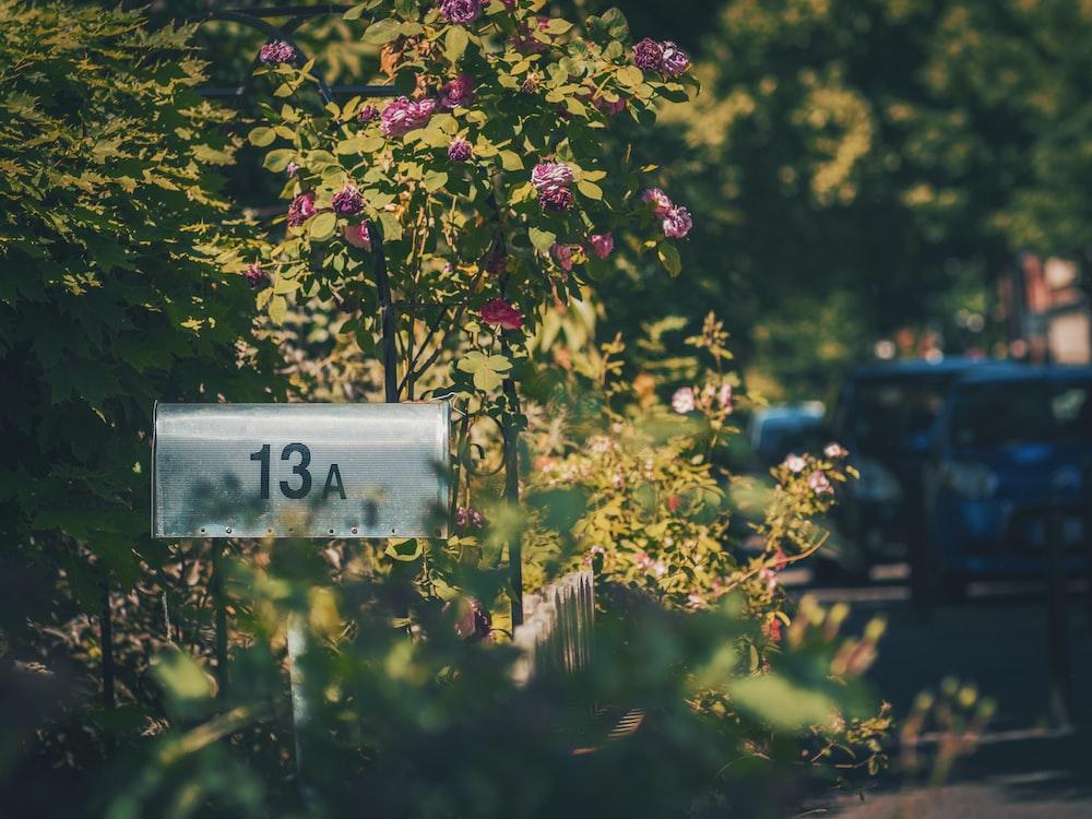 gray 13A mailbox
