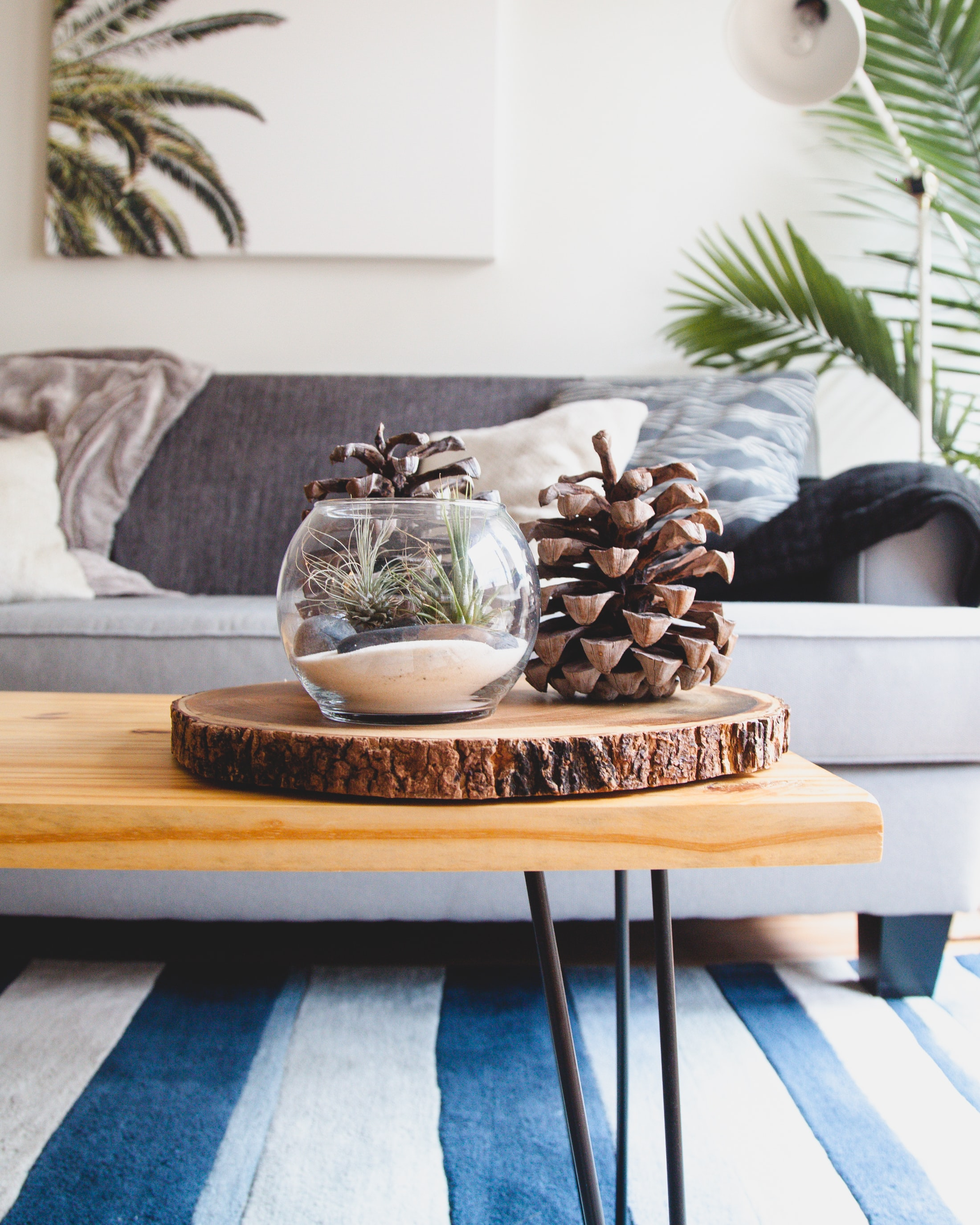 A couch with throw pillows and blankets and a table with an aquarium filled with pinecones on top of it