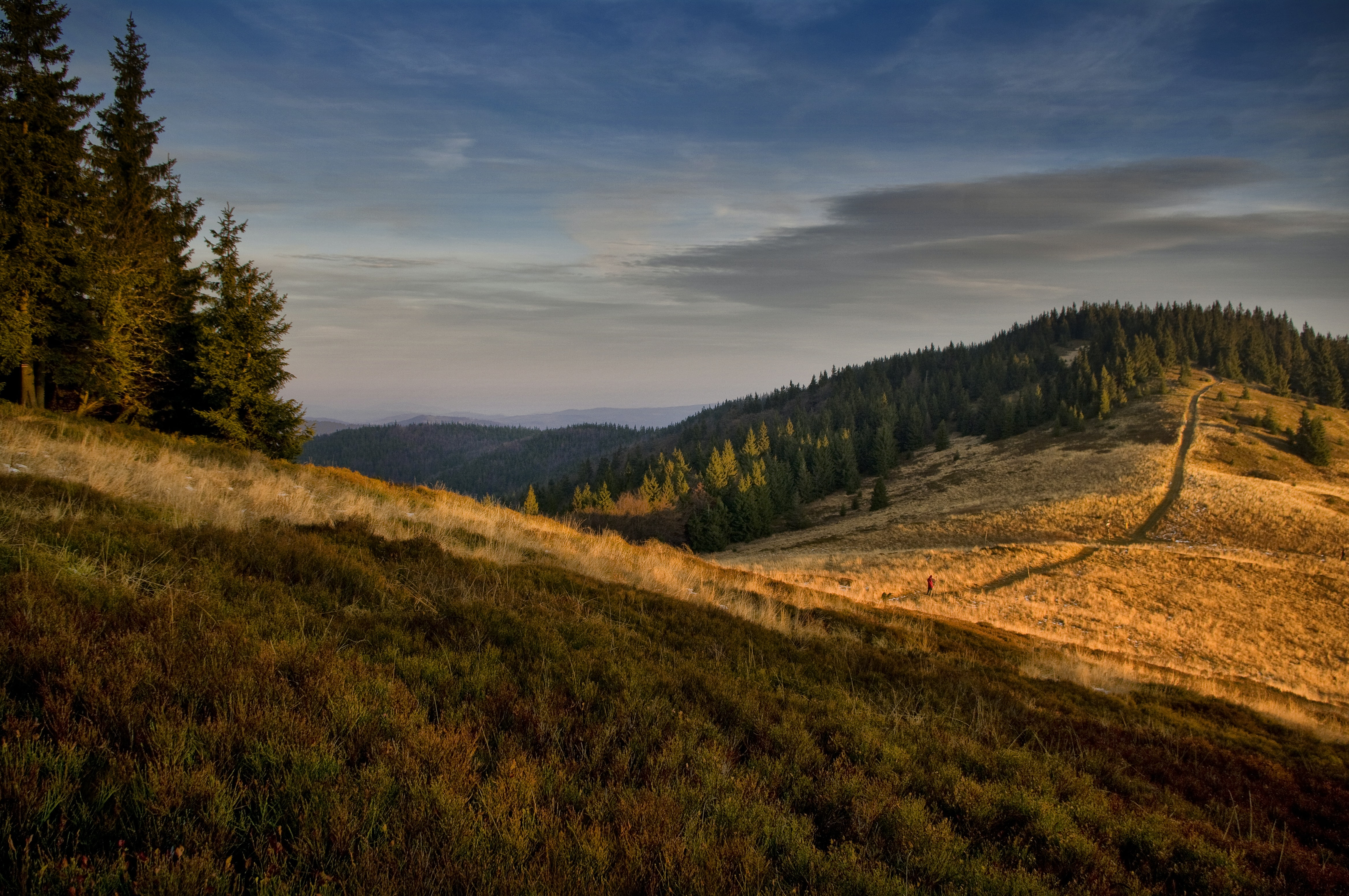 The golden hour sunset over a mountain with trees and open grass in Bacówka PTTK na Rycerzowej.