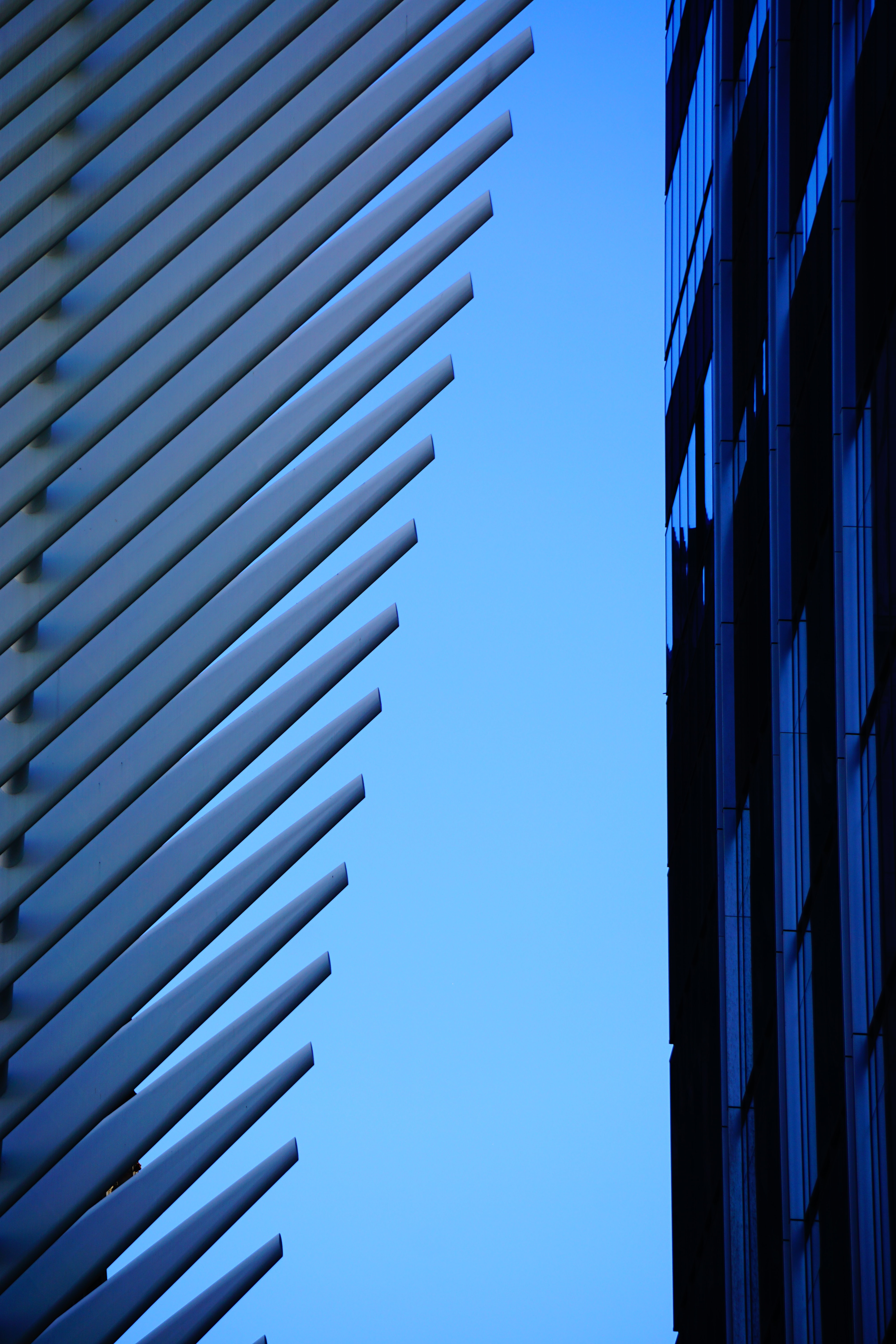 architectural photography of white and blue building