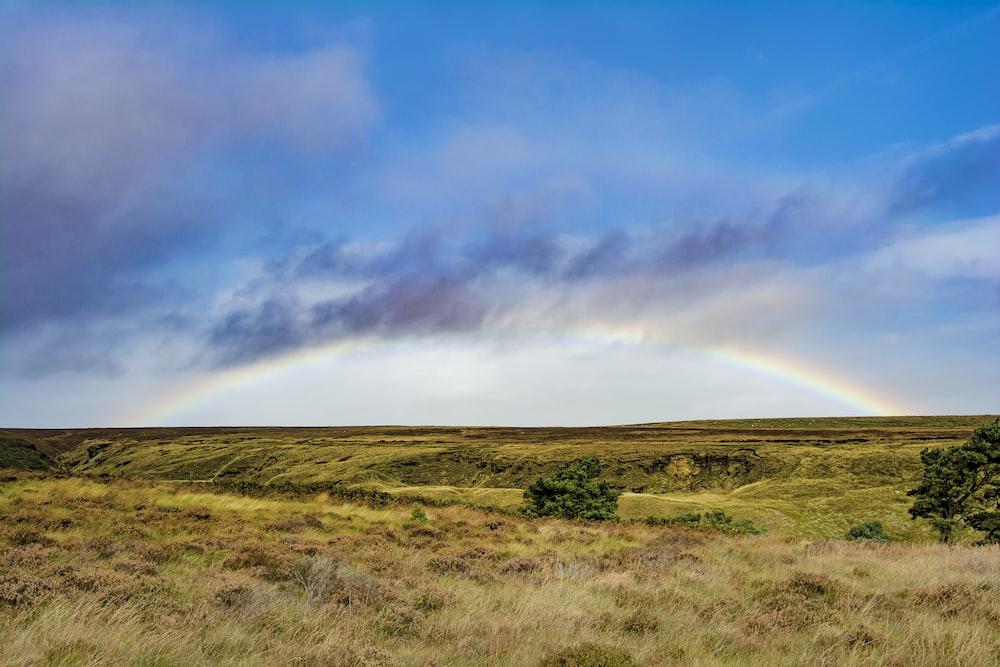 rainbow pictures - Rainbow Picture