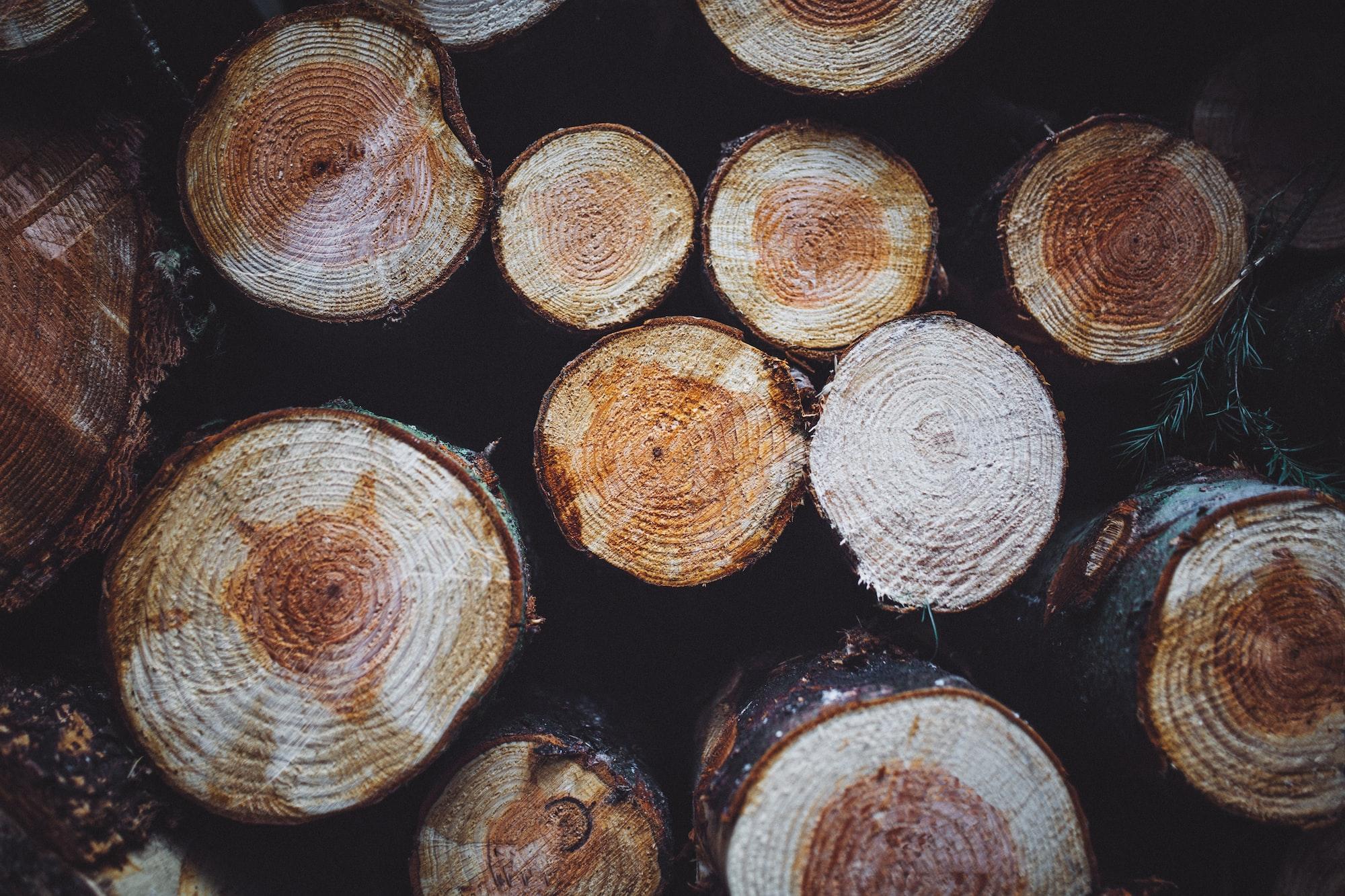 Rings on logs