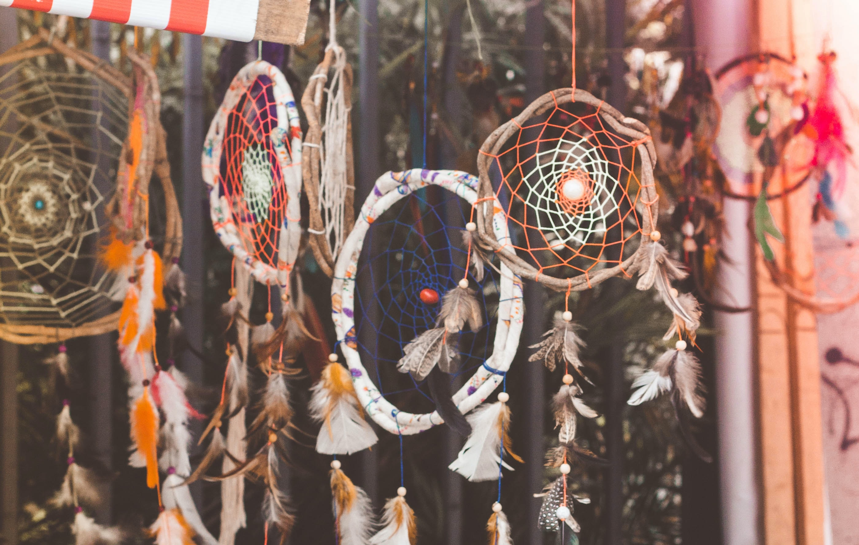 closeup photo of hanging dream catchers