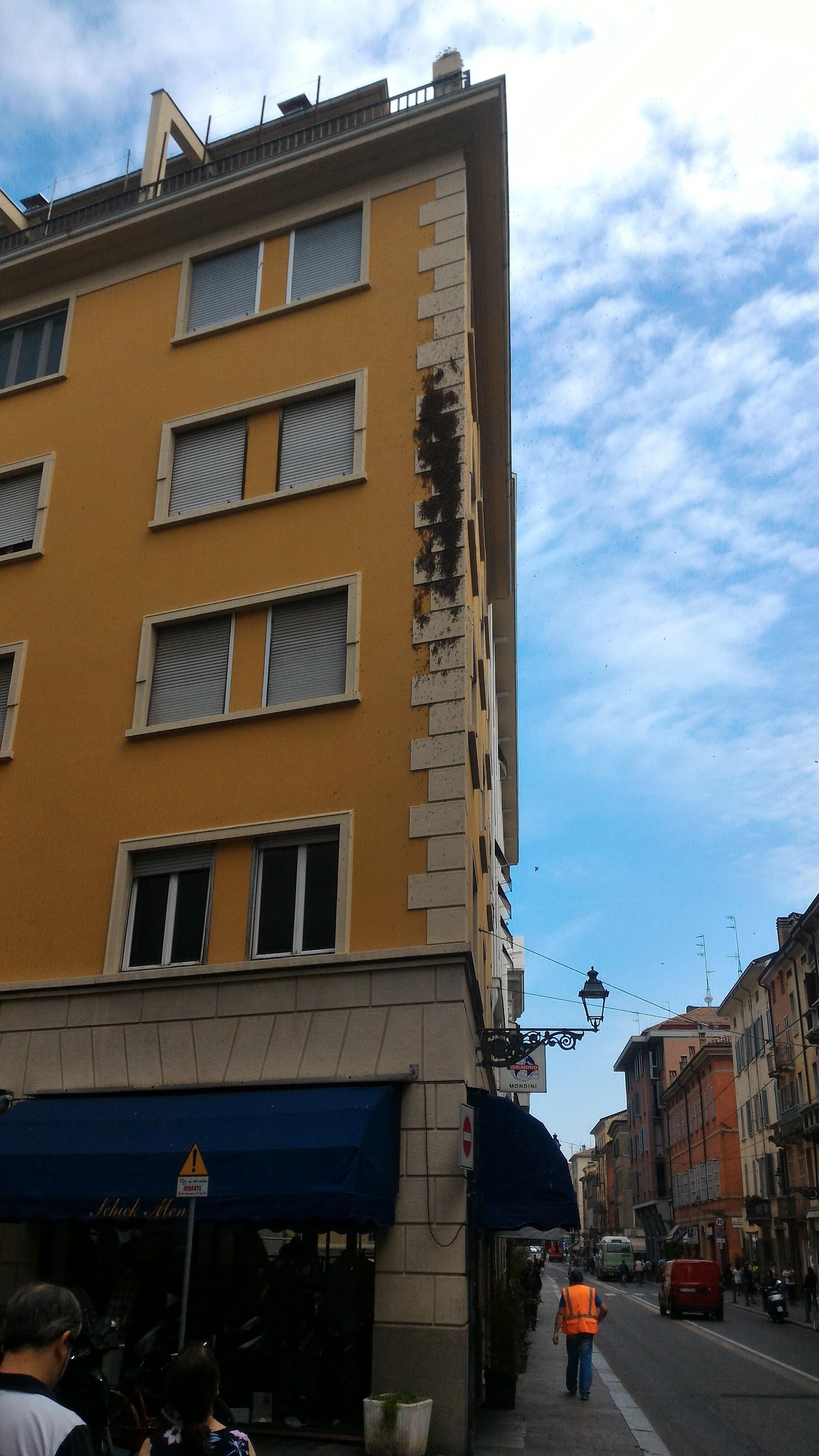 Free Unsplash photo from Giuseppe Montali