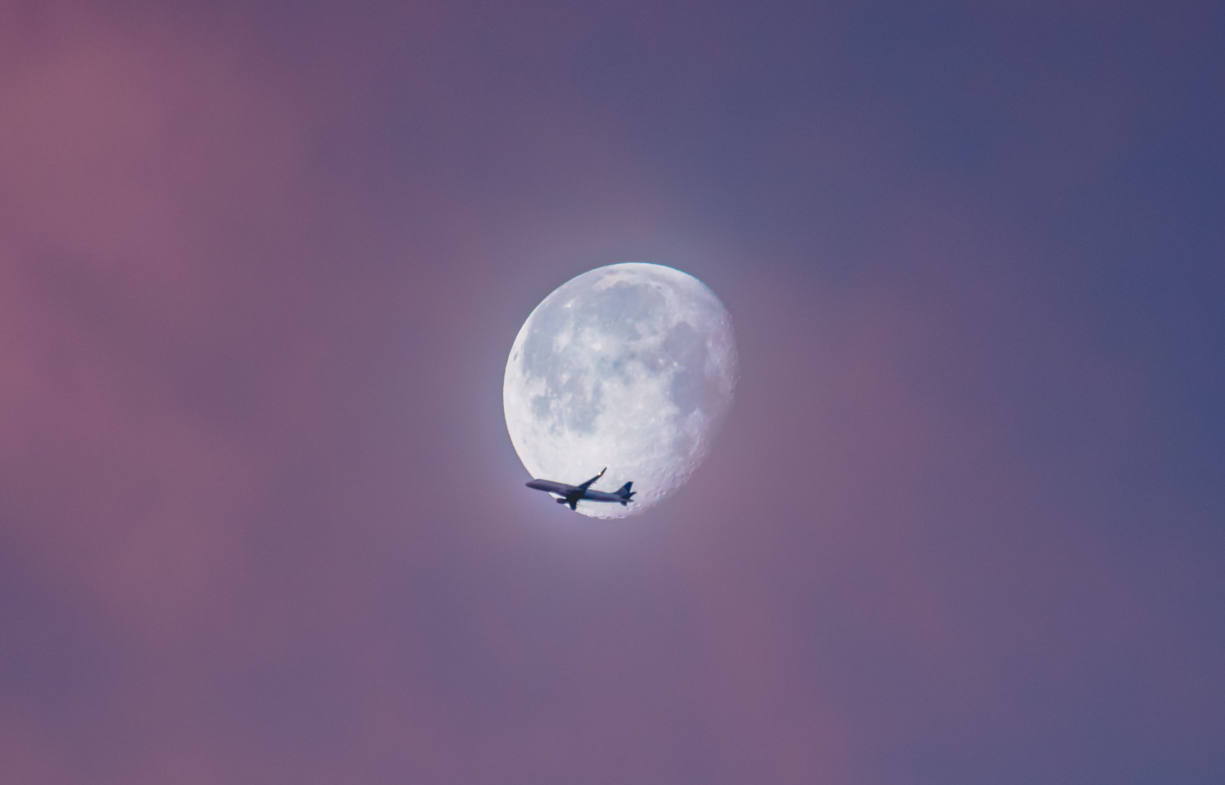 A plane appears to be flying against the moon against a pink sky over Alamo Square