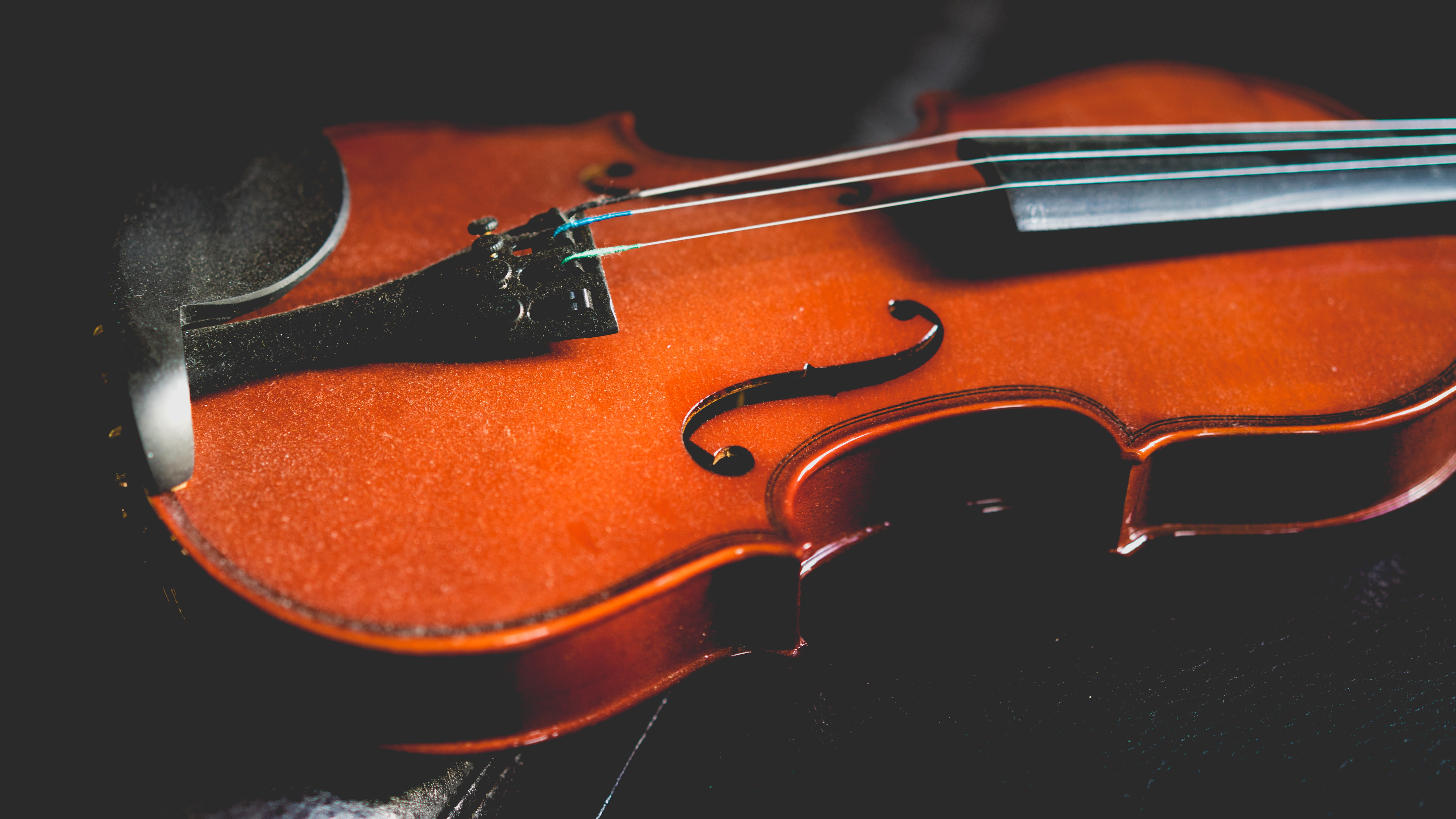 A close-up of a violin covered with dust