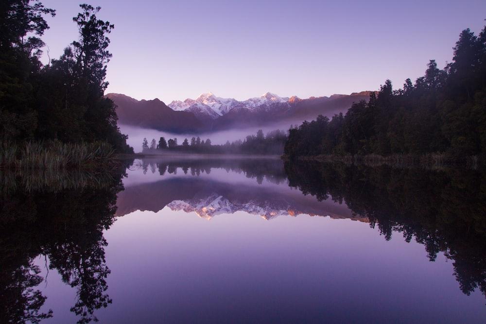 photo of lake near trees