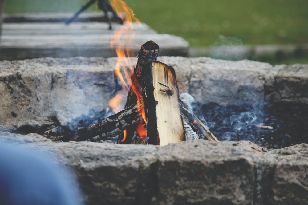 photo of firewood on fire