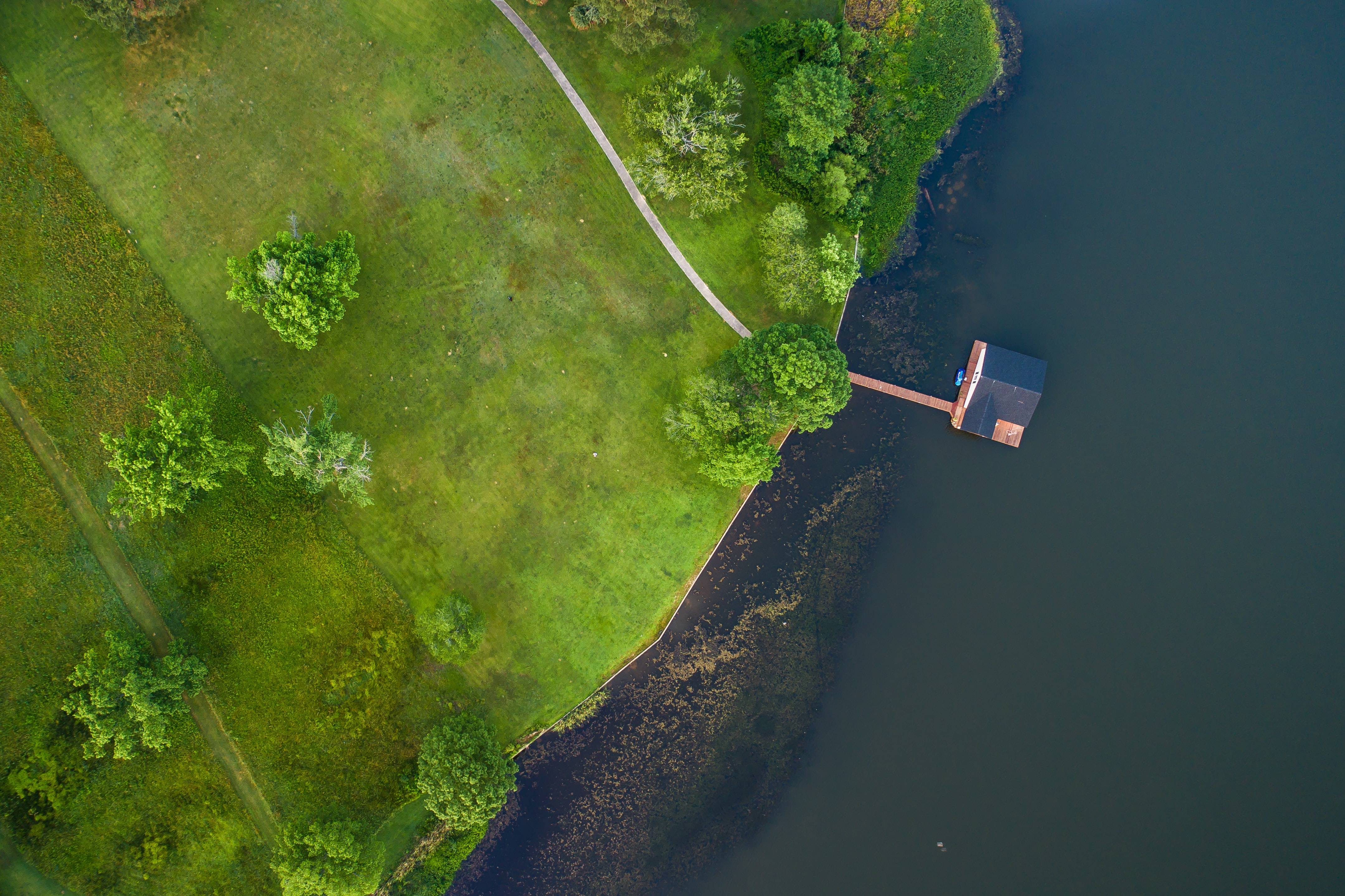 Overhead view of a cabin on the lake near a green landscape