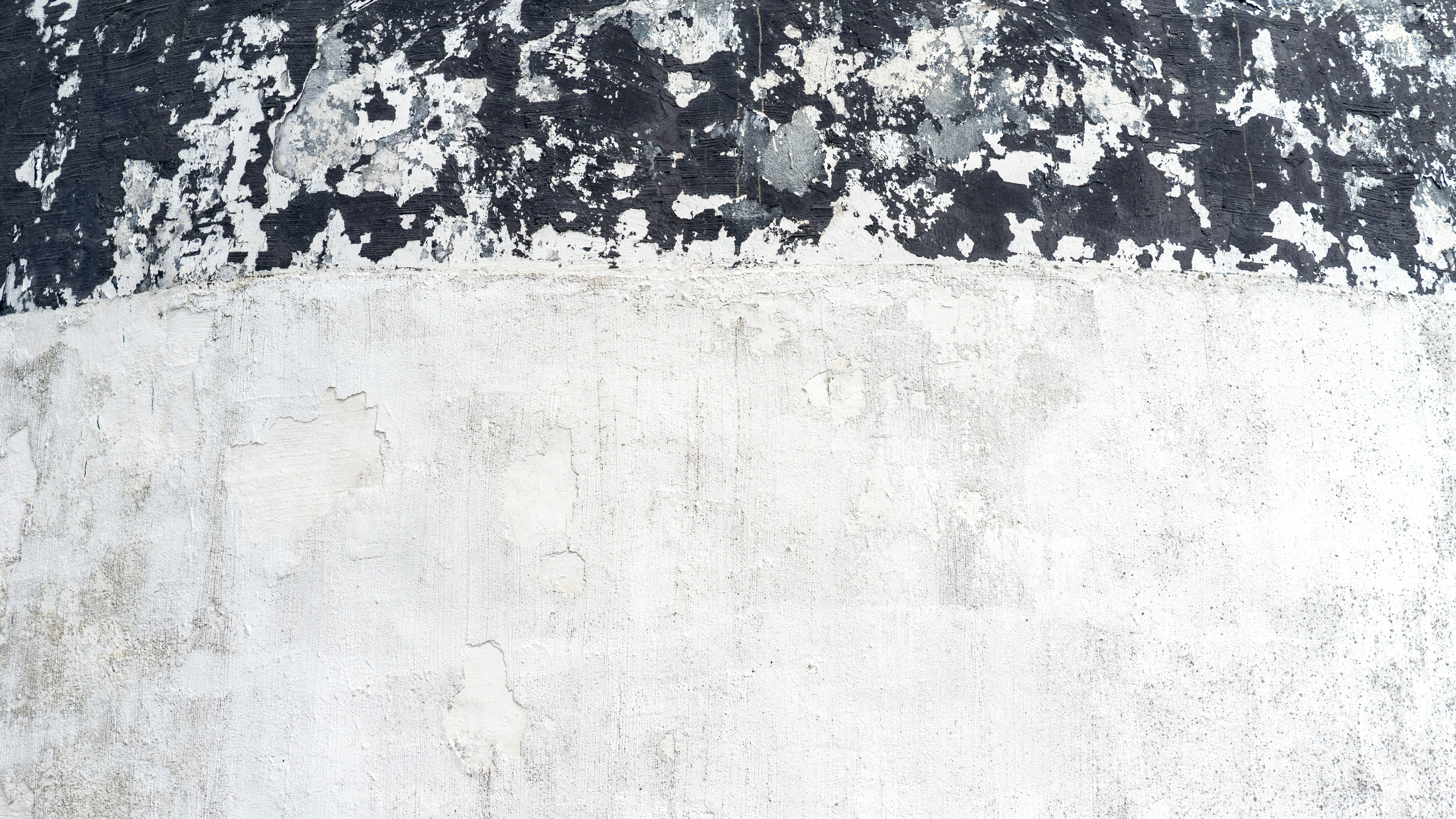 Black and white close up shot of grunge, textured painted artwork
