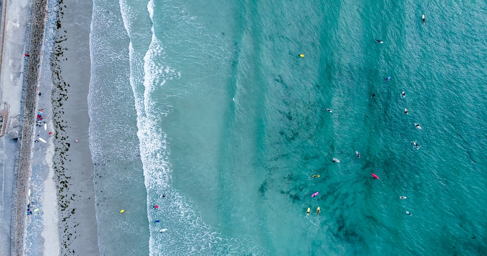 aerial photography of people on beach at daytime