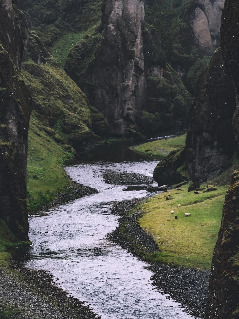 photo of stream
