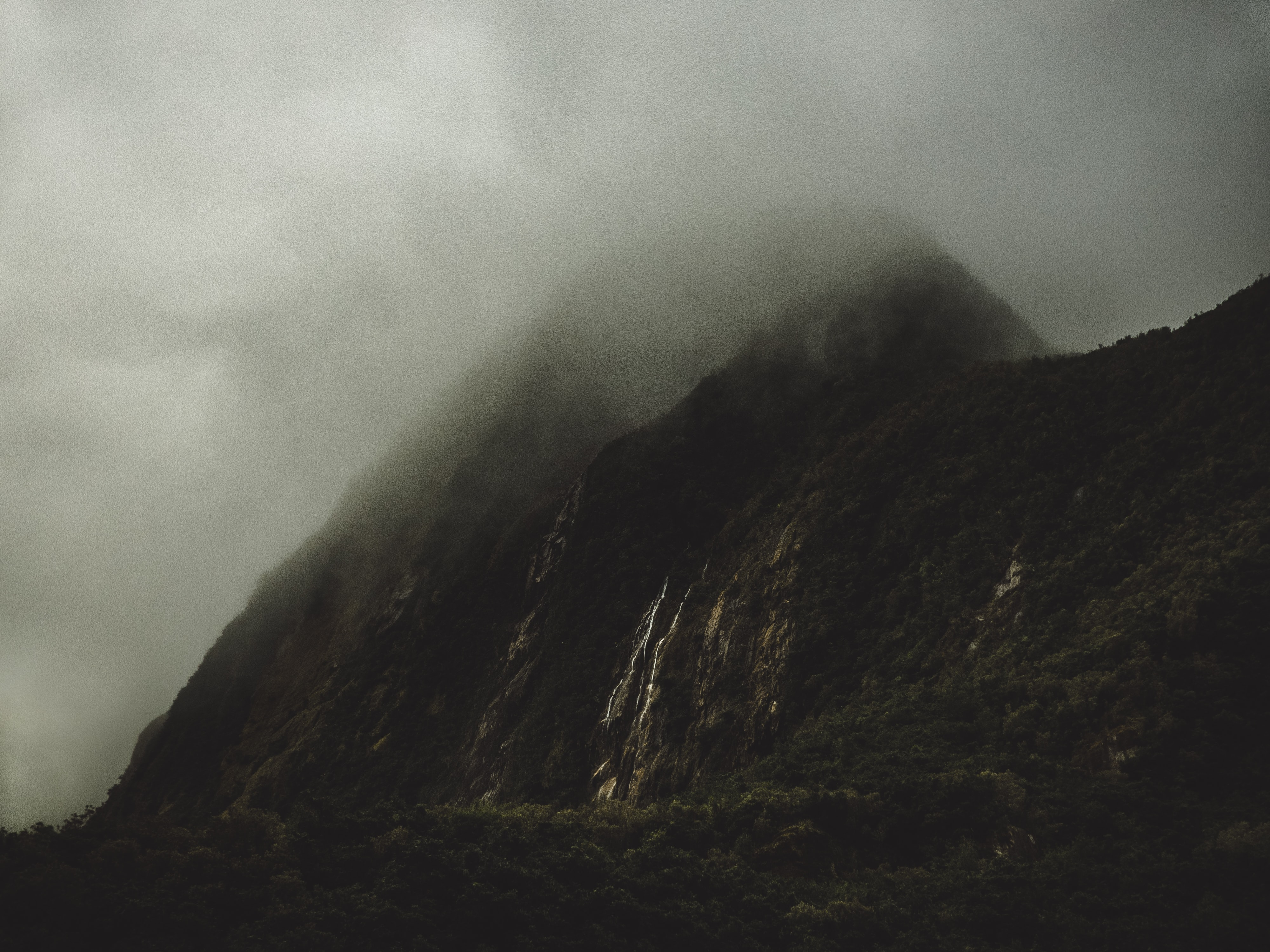 A tall mountain peak with a wooded slope shrouded in dense mist