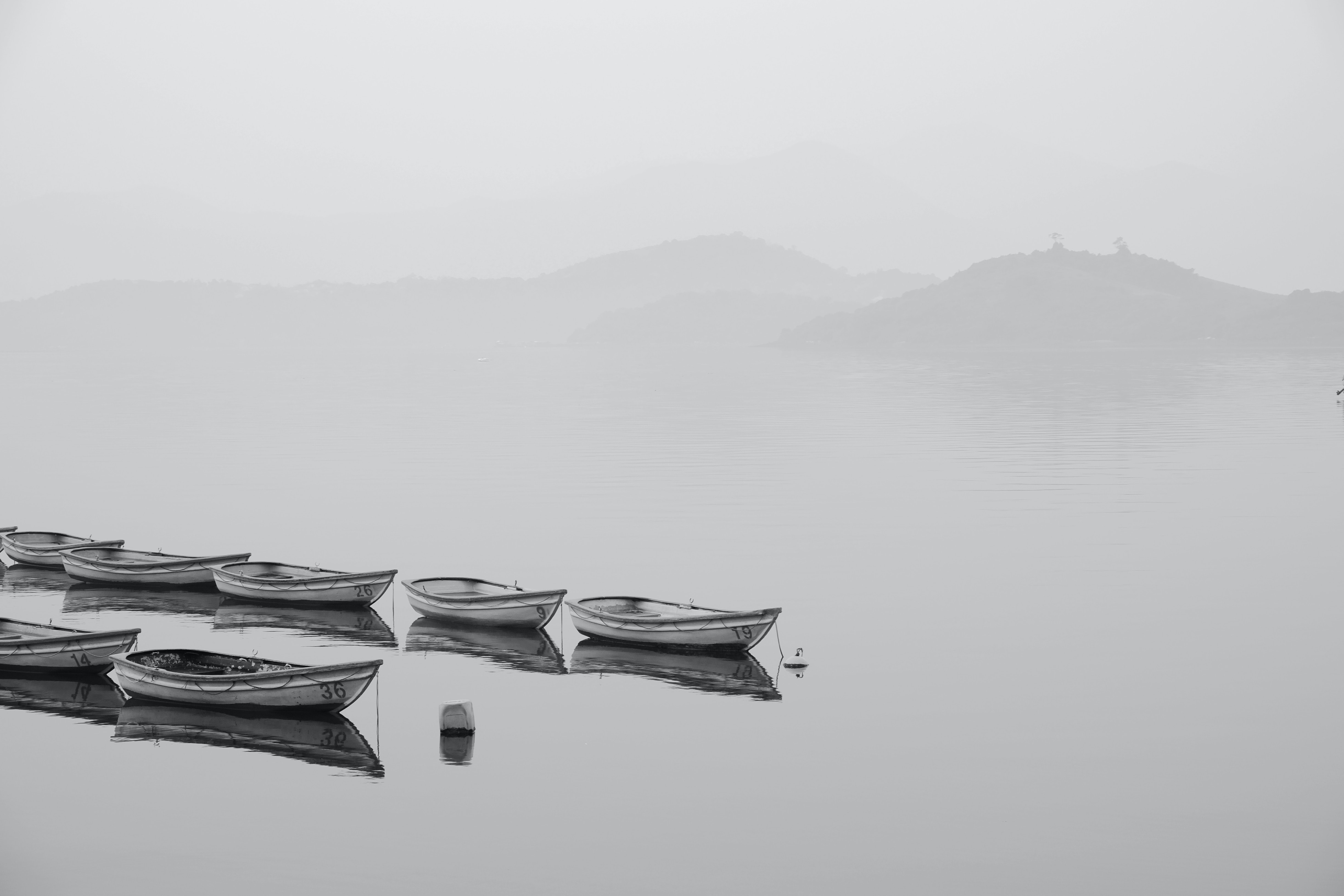 white row boats inline on body of water during foggy weather