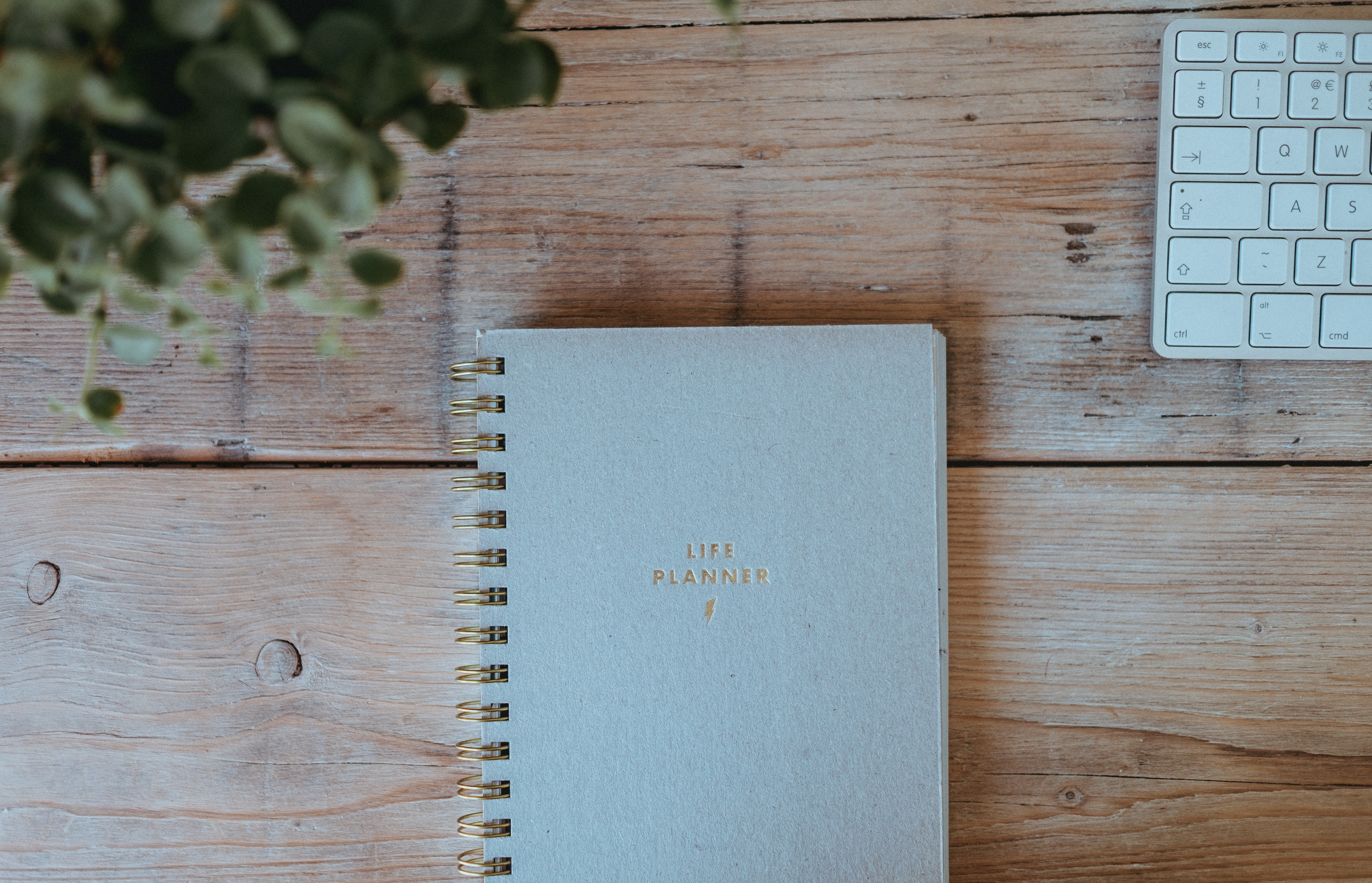 "A ""Life Planner"" notebook on a wooden surface with a keyboard and a plant in the upper corners"