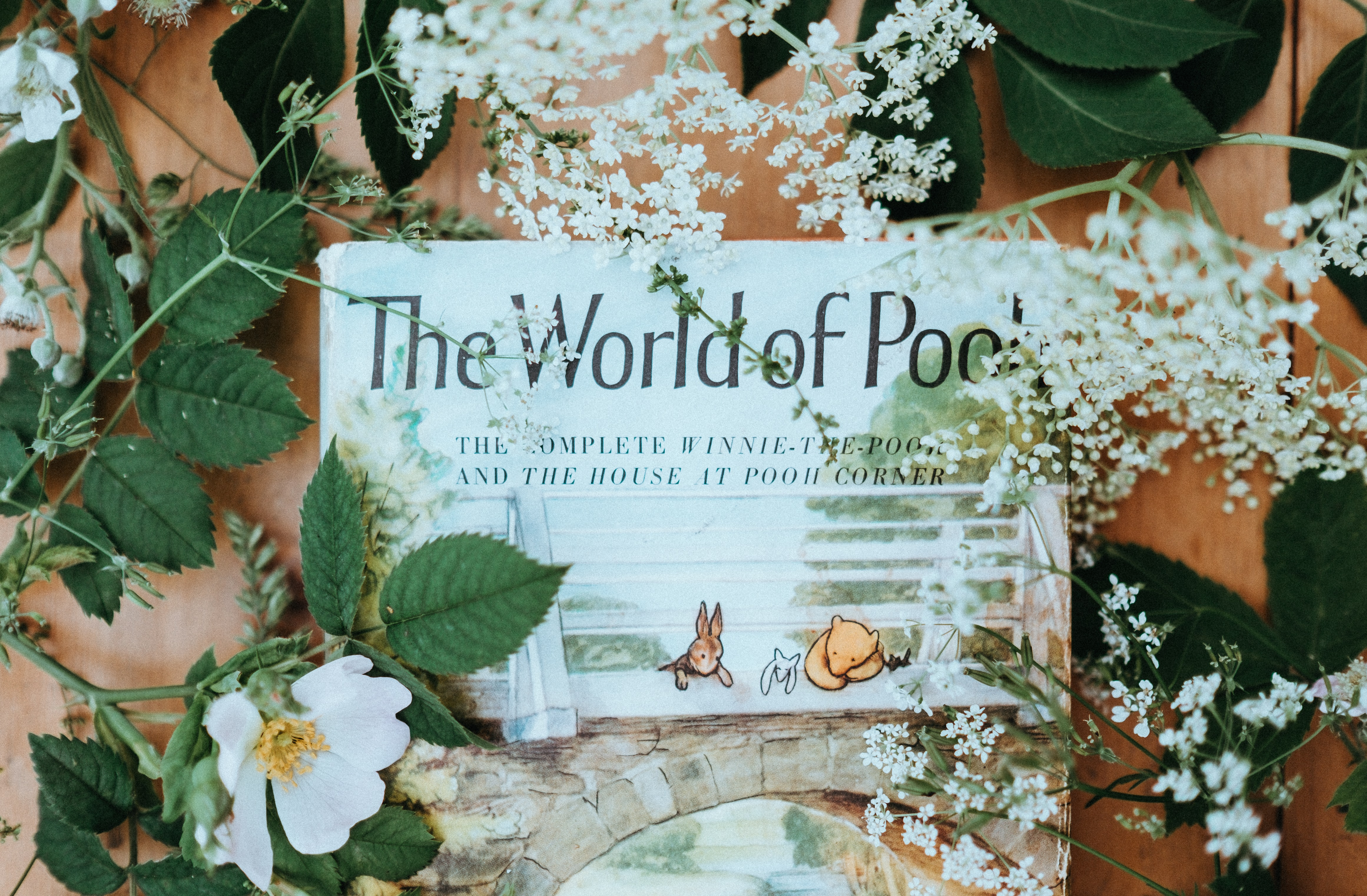 A Winnie-the-Pooh book surrounded by white flowers