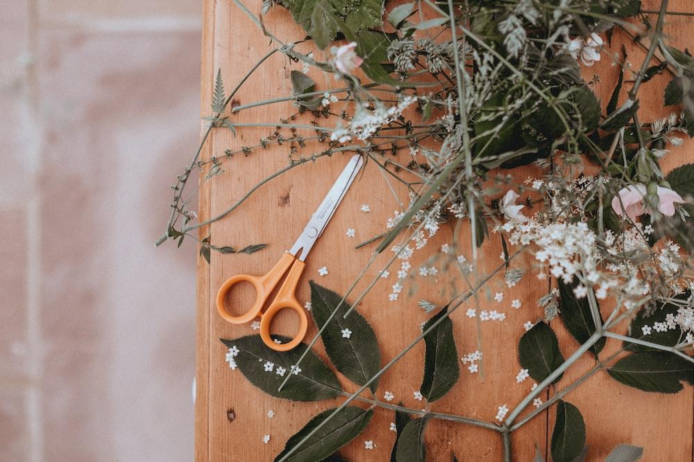 scissors on table