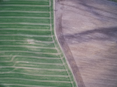 Minimal areal of two field