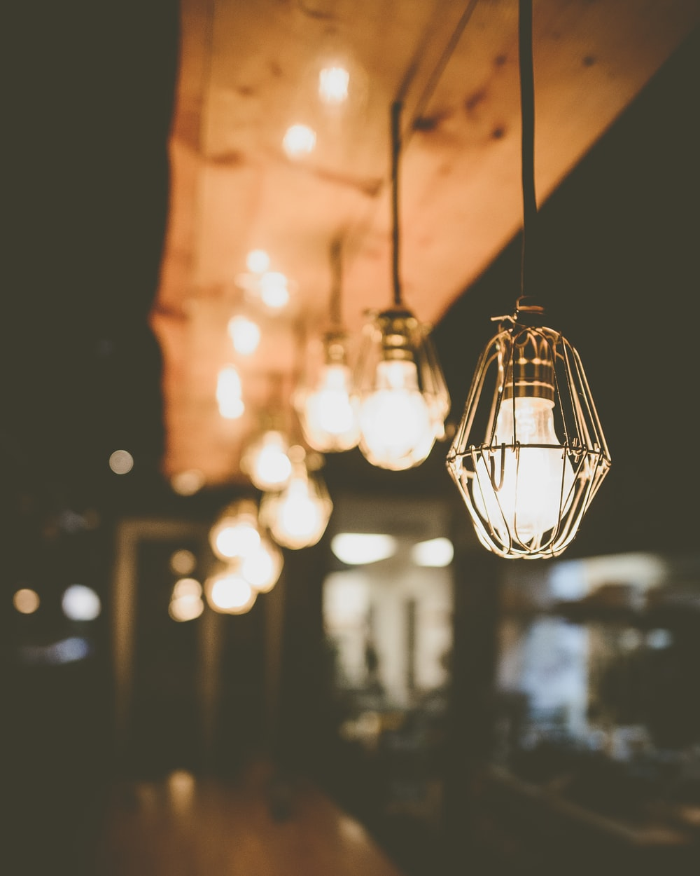 selective focus of lighted bulbs