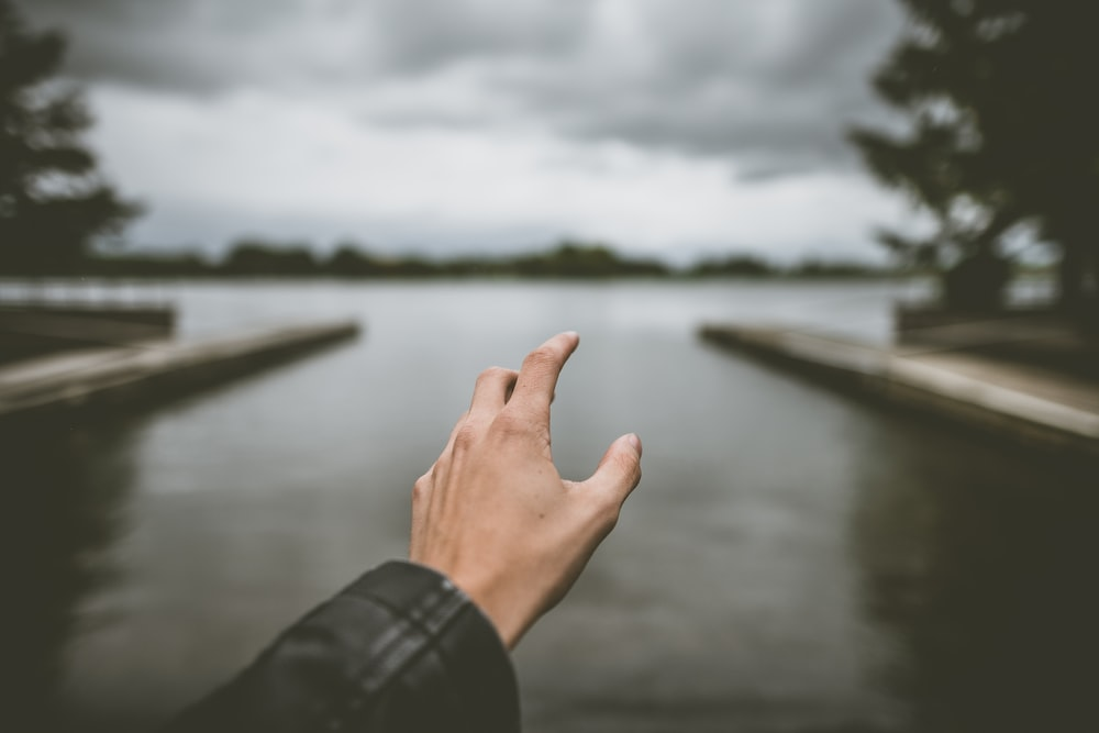 shallow focus photography of person hand reaching