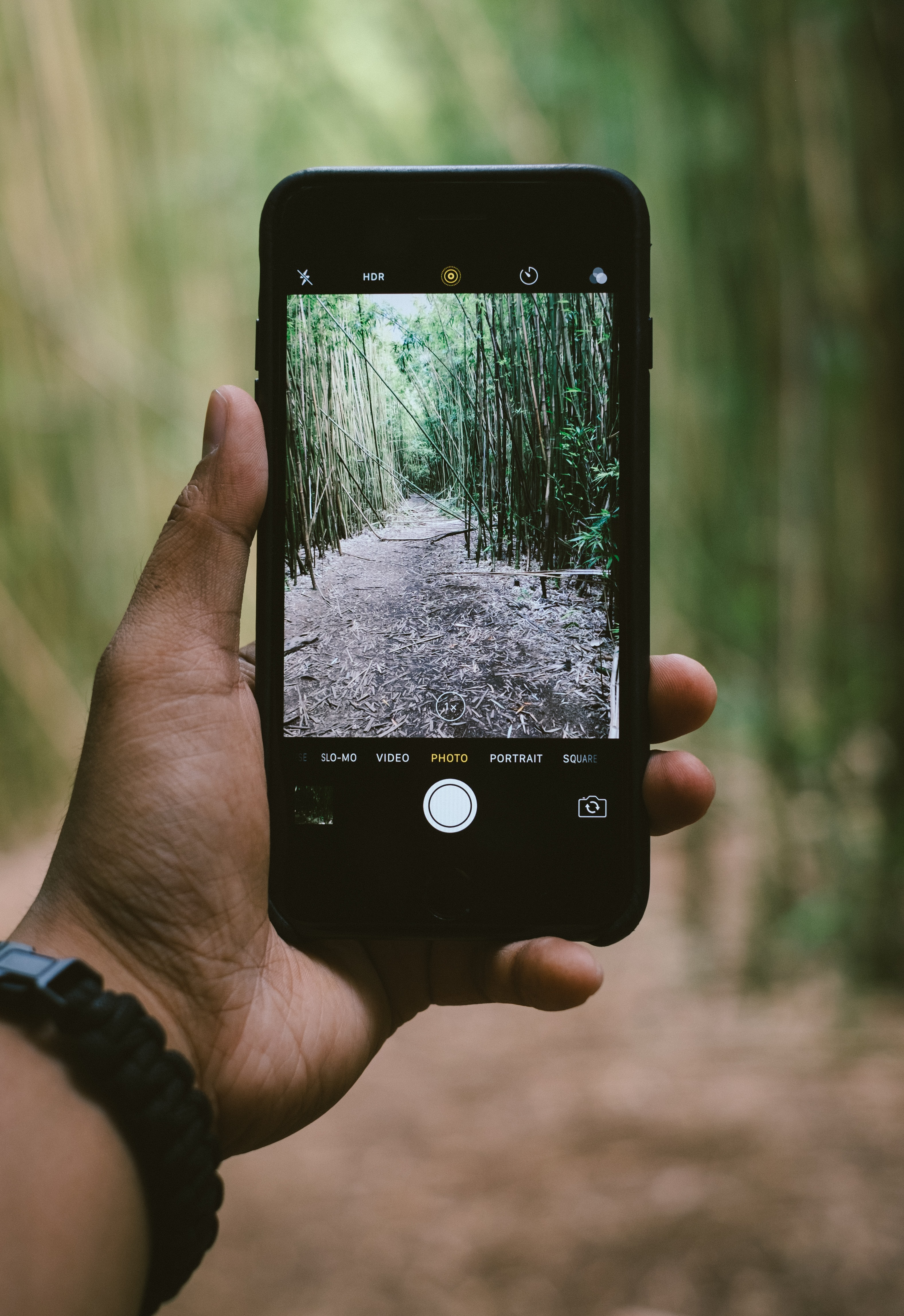 Outstretched hand holding an iPhone with a forest landscape in the viewfinder