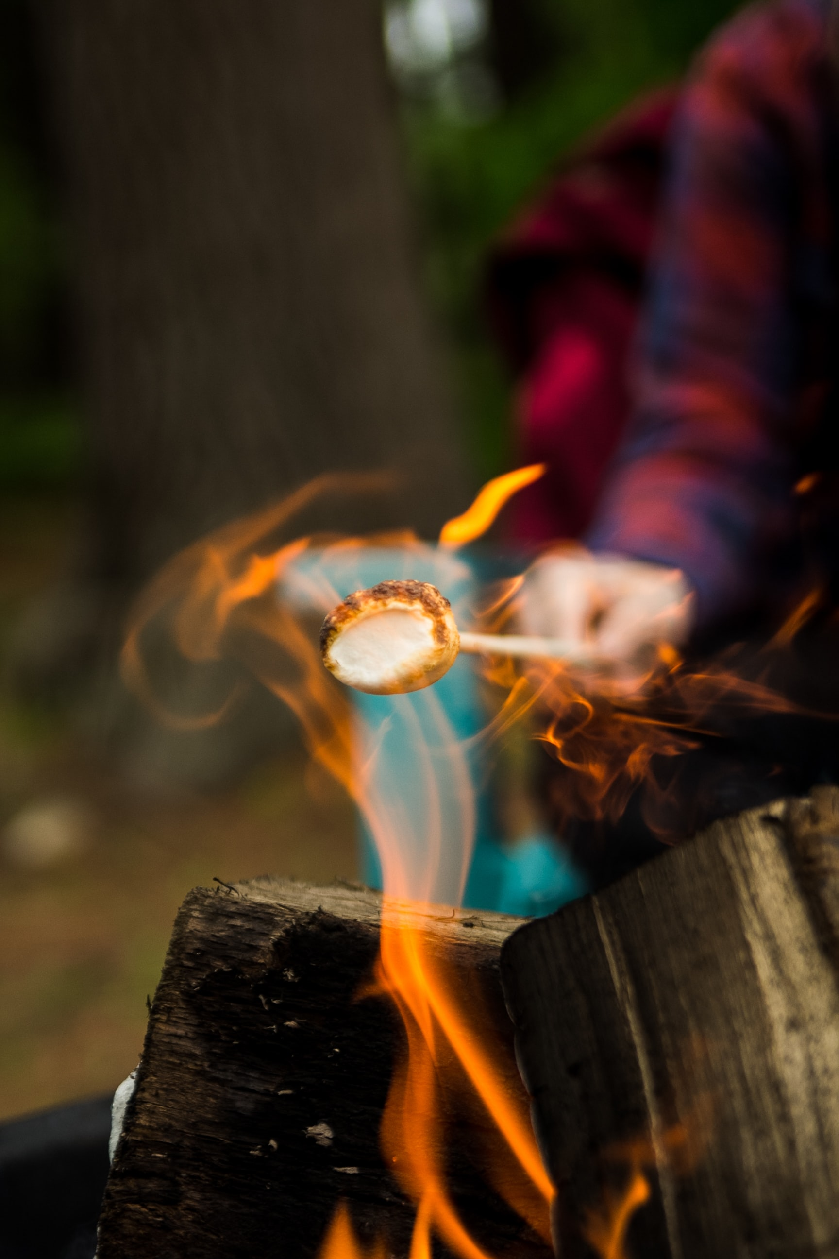 A person in plaid holding a marshmallow out over a fire to roast