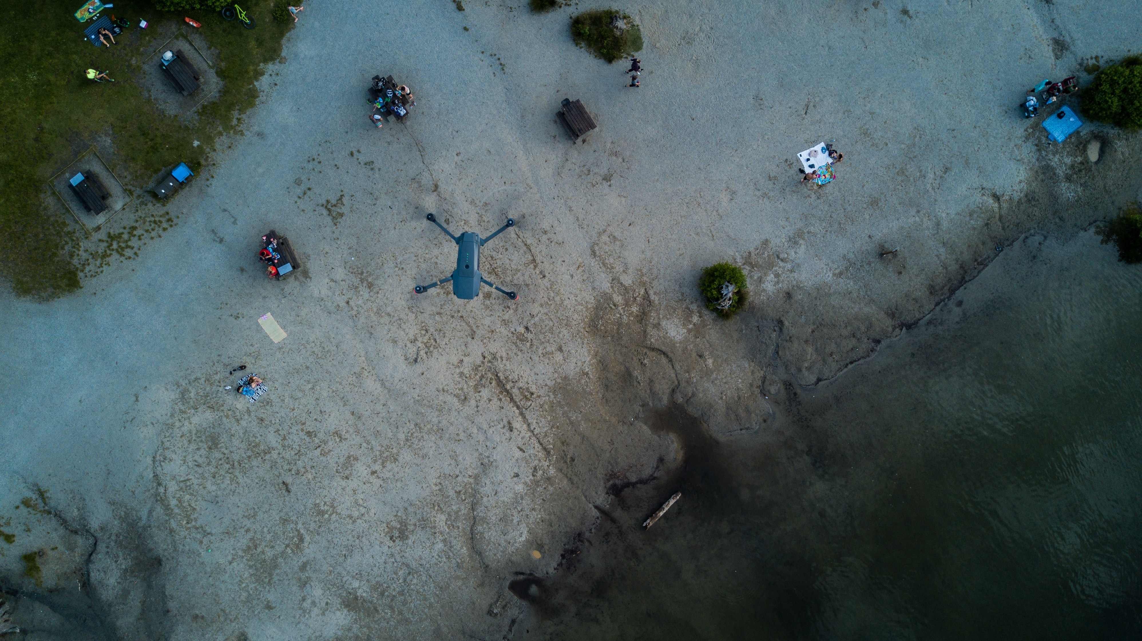 aerial view photography of shore beside ocean