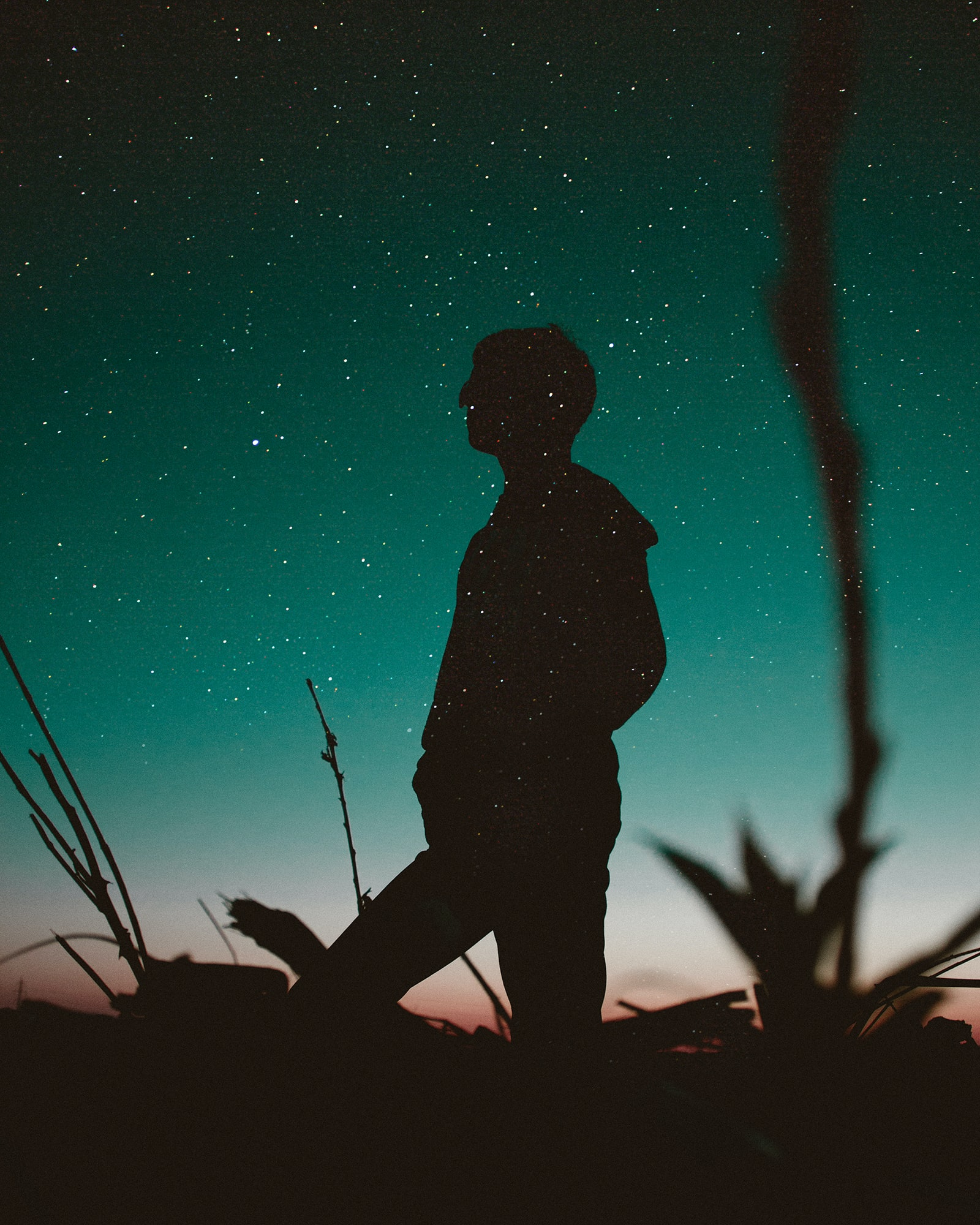 A shot from below of a person in silhouette against a starry, teal night sky
