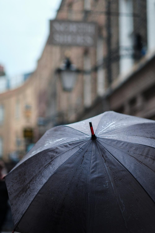 gray umbrella