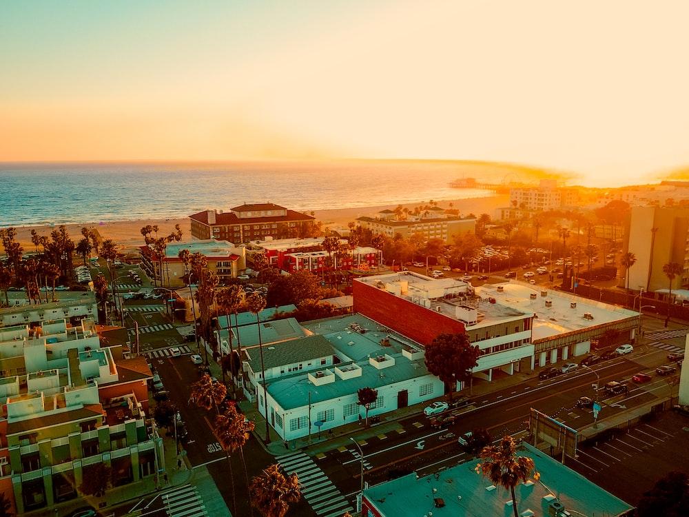 bird's eye view of houses near seashore