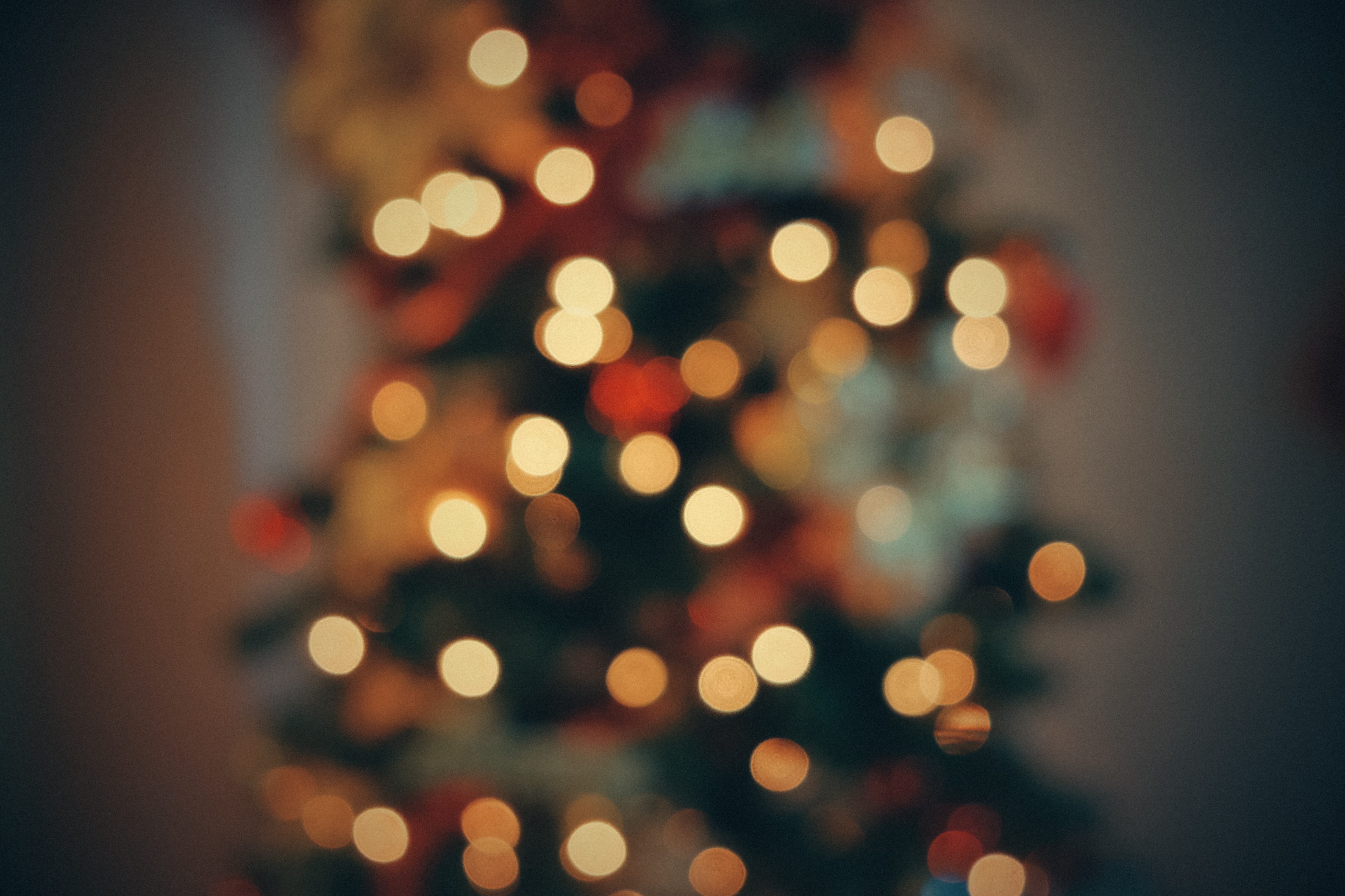 Bokeh tree light and christmas tree hd photo by jad limcaco