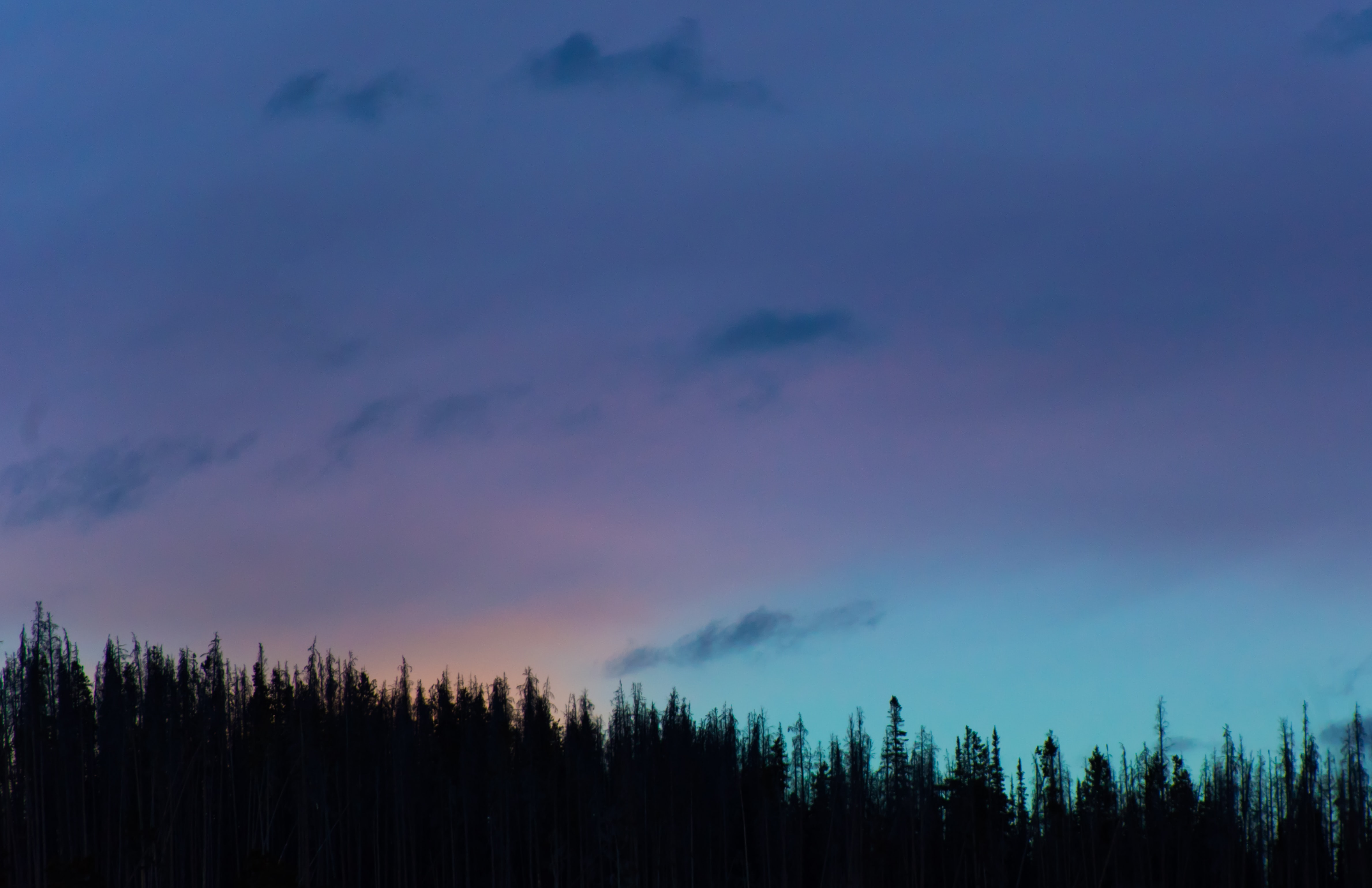 Colorful evening sky over a forest in Silverthorne