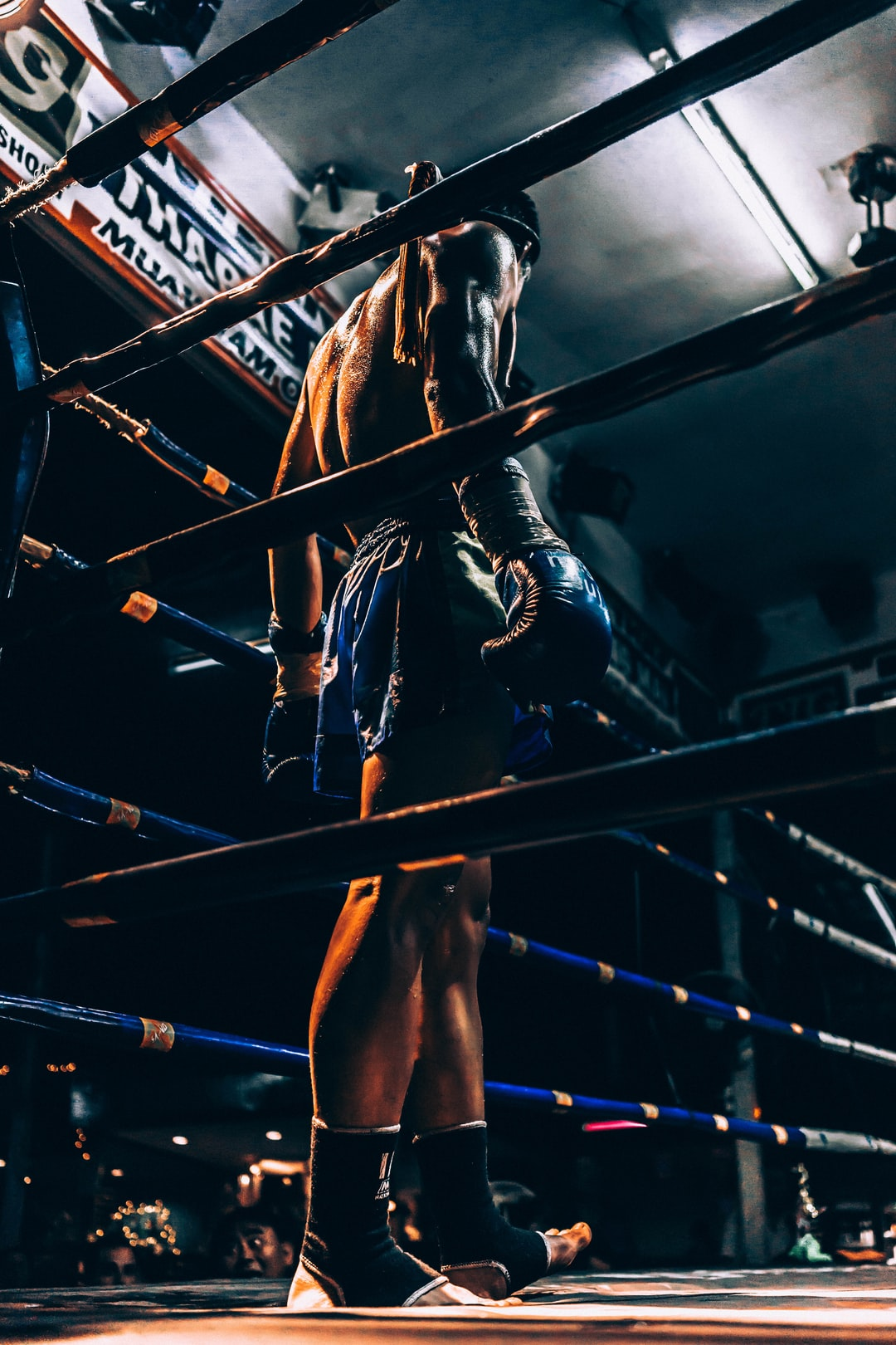boxer wearing blue short standing in corner of ring