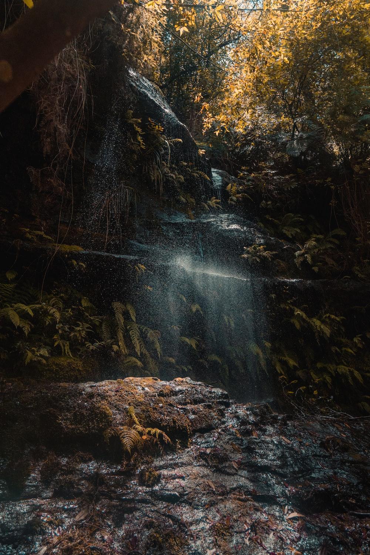 macro photography of waterfalls