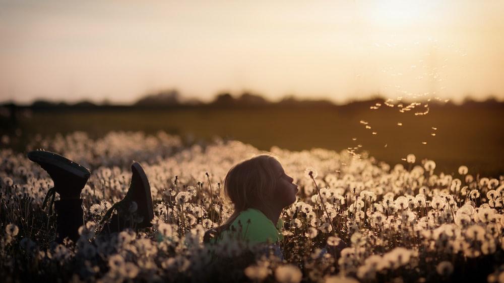 girl lying on dandelion field