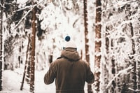 person standing in middle of trees covered in snow