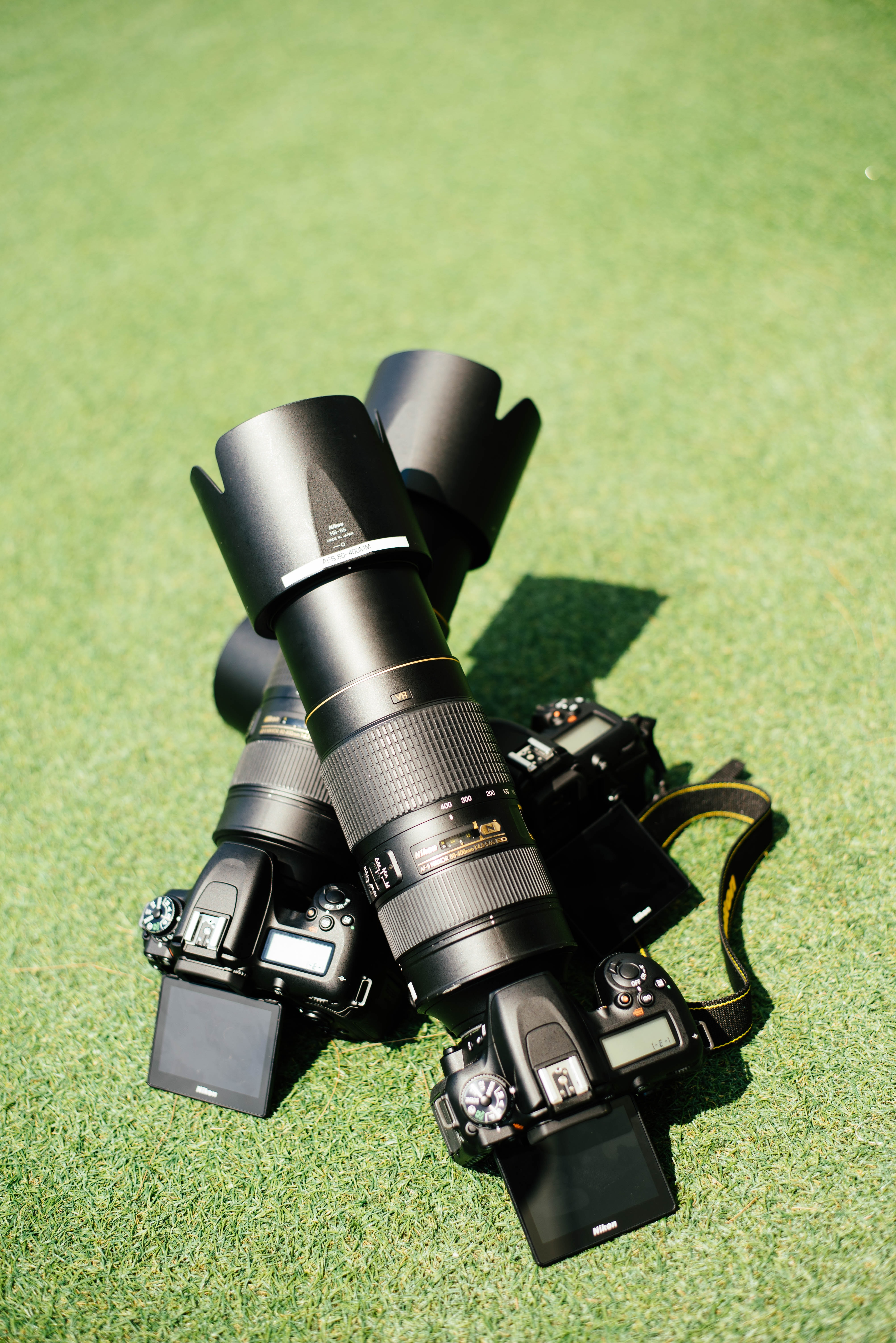 two black Nikon DSLR cameras on green grass
