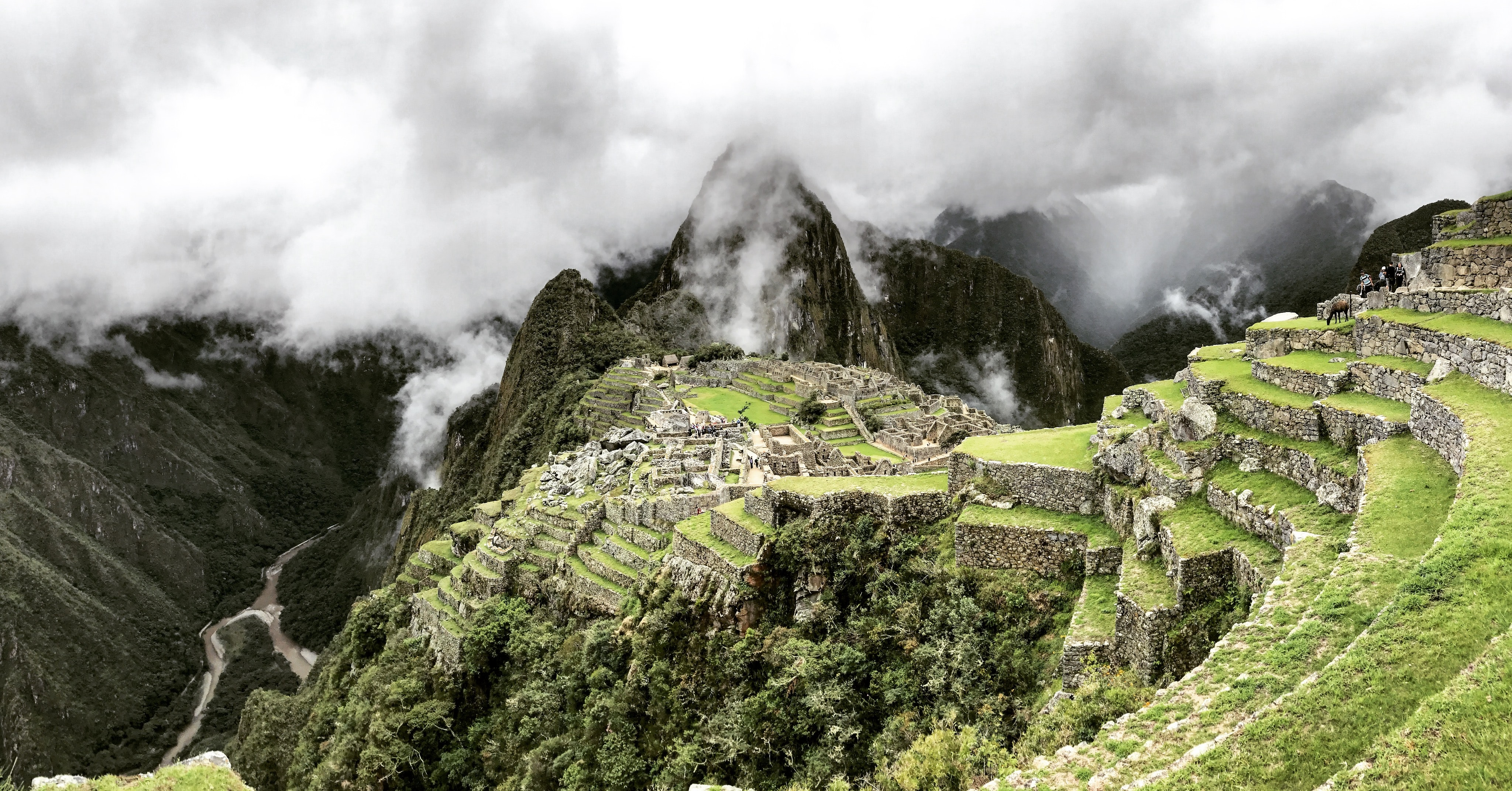 Spectacular view of the green terraces of the Machu Picchu ruins