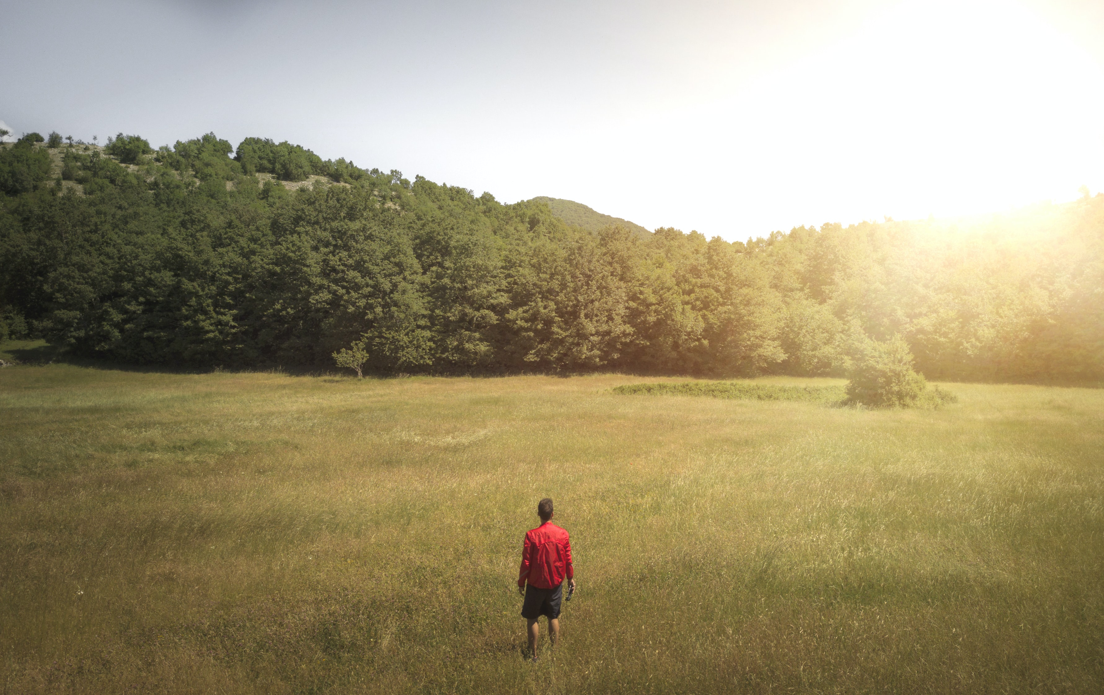 Man in red shirt and gray shorts standing in the middle of a field staring at a hilly tree line