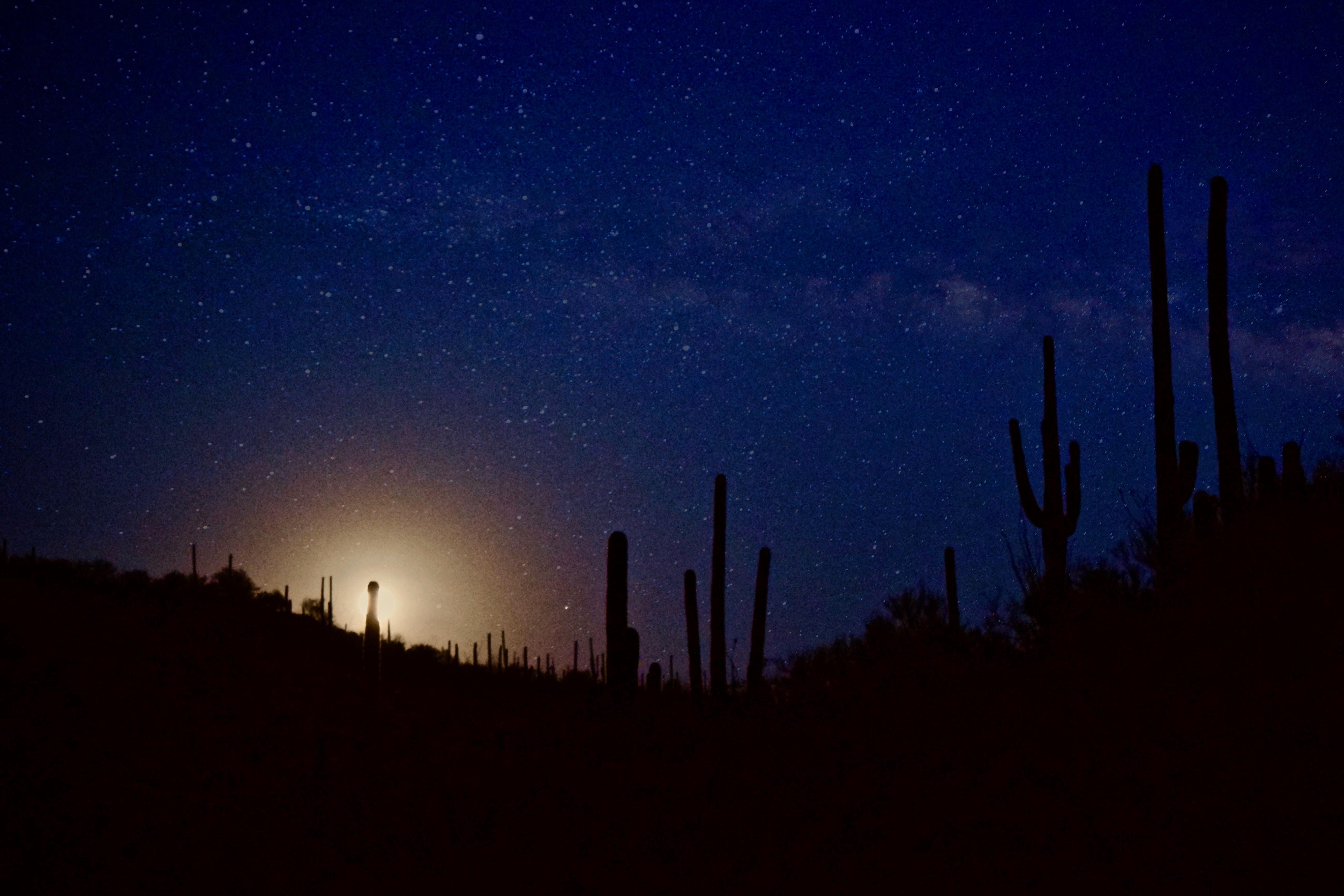 Sunrise at Mount Lemmon with the sky full of stars over the desert landscape.