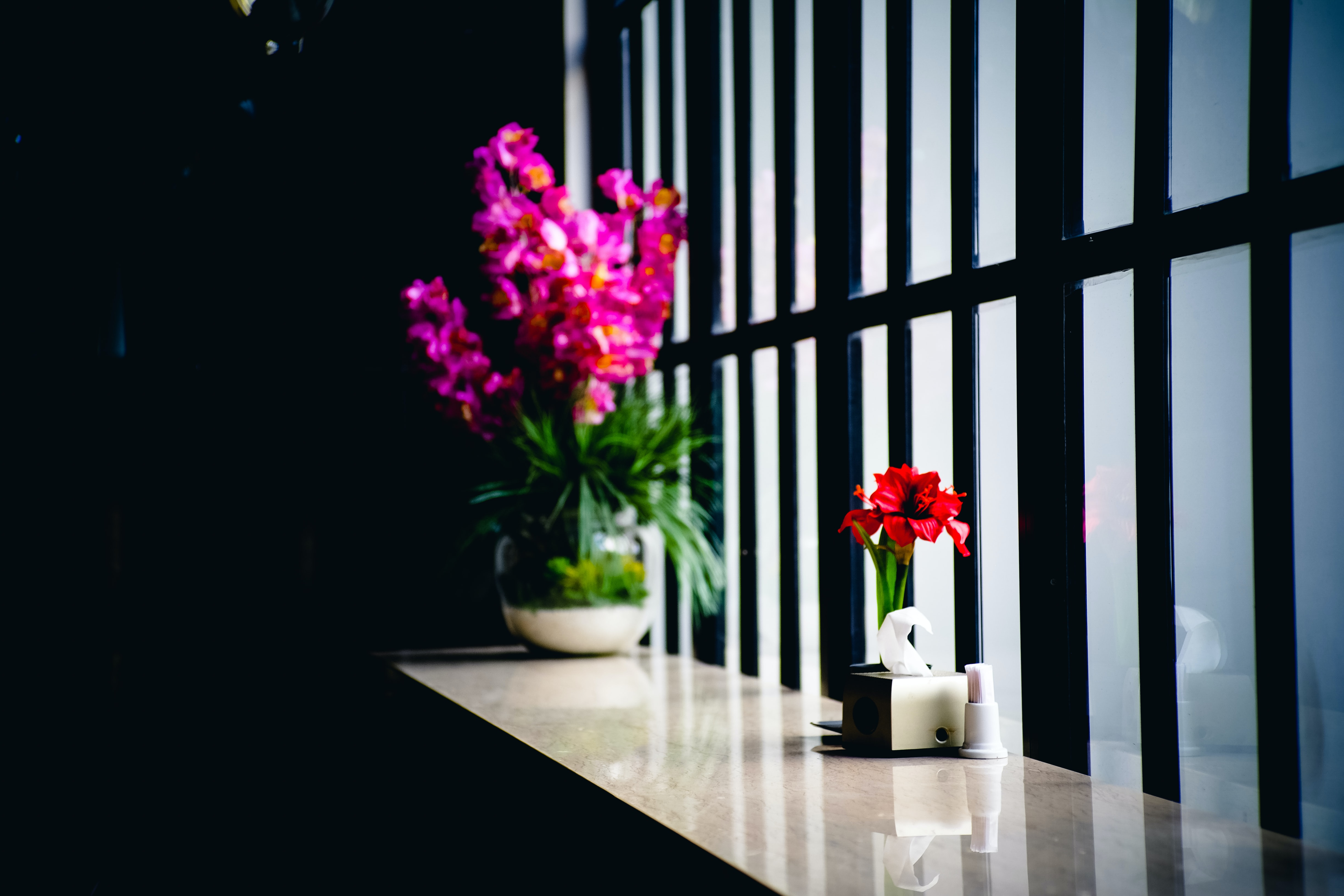 Small red flowers in a pot and a larger flowerpot with pink flowers on a marble windowsill