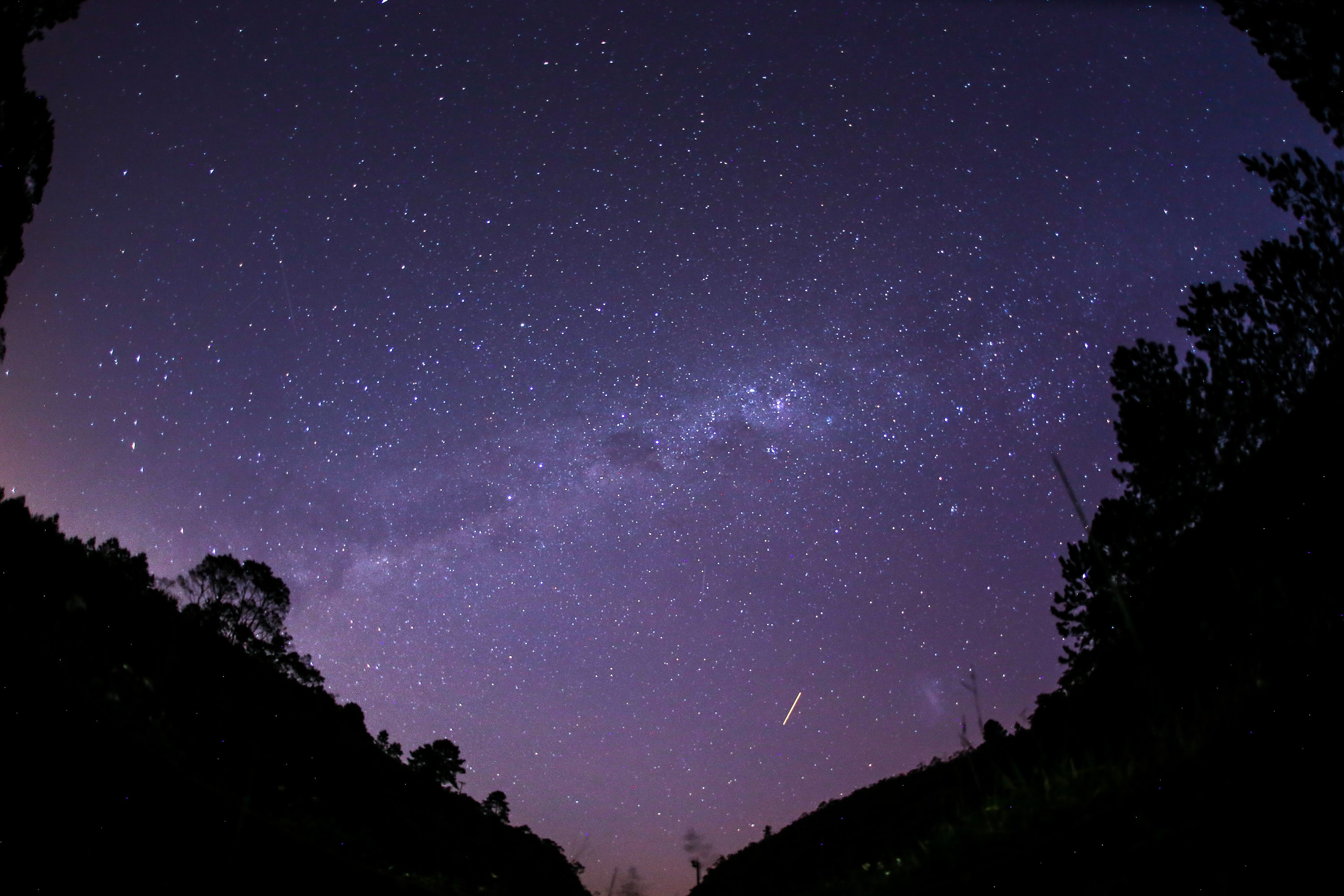 milky way above forest silhouette during nighttime
