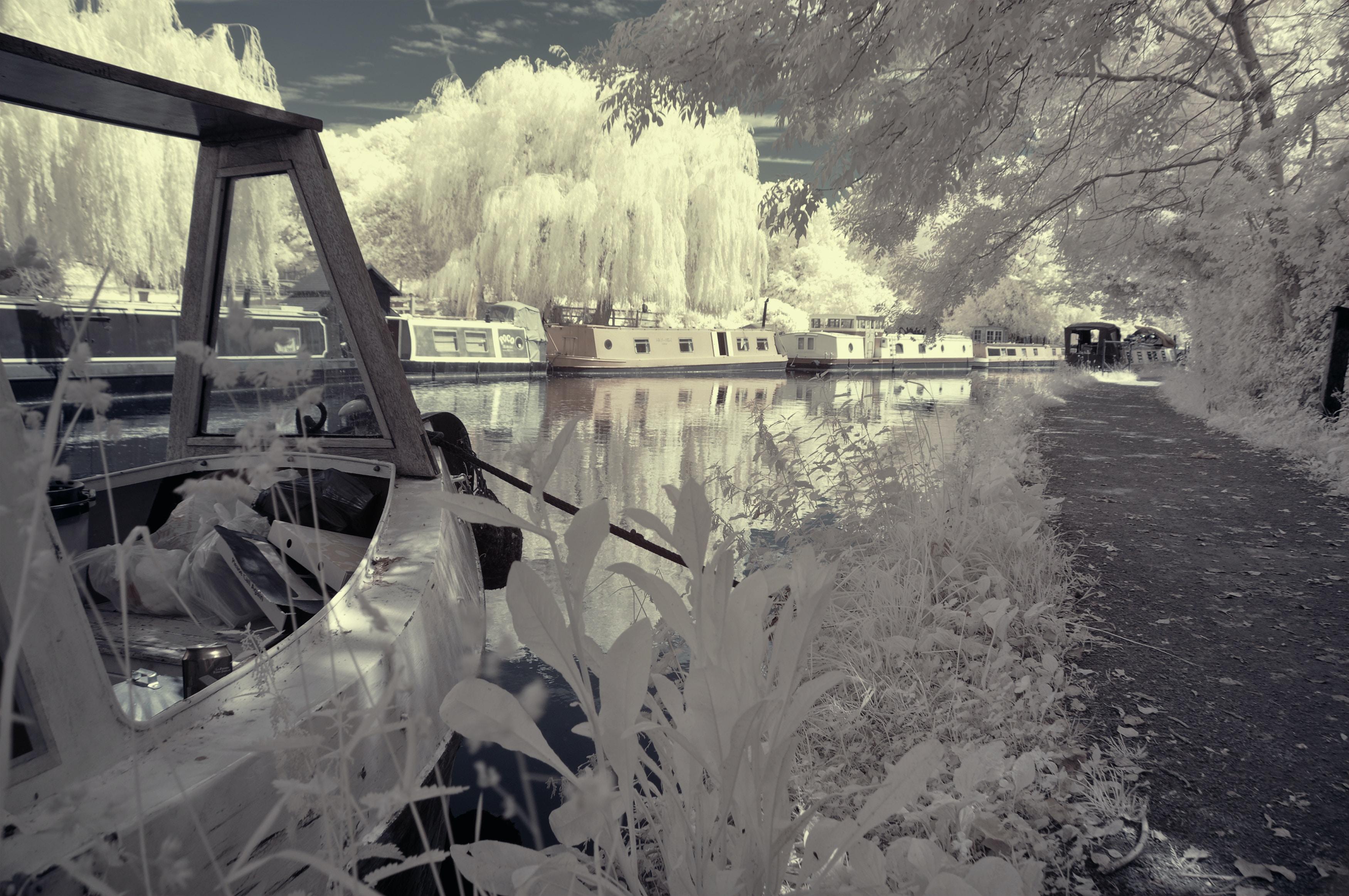 Free Unsplash photo from dorota dylka