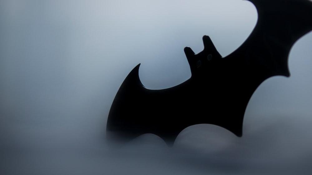 The Dark Knight Bat Symbol Batarang And The Batman Hd Photo By