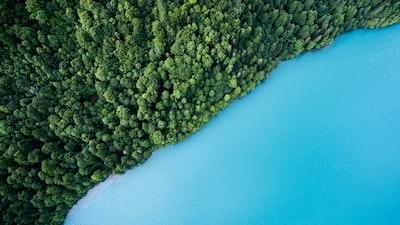 Blue lake and green shore