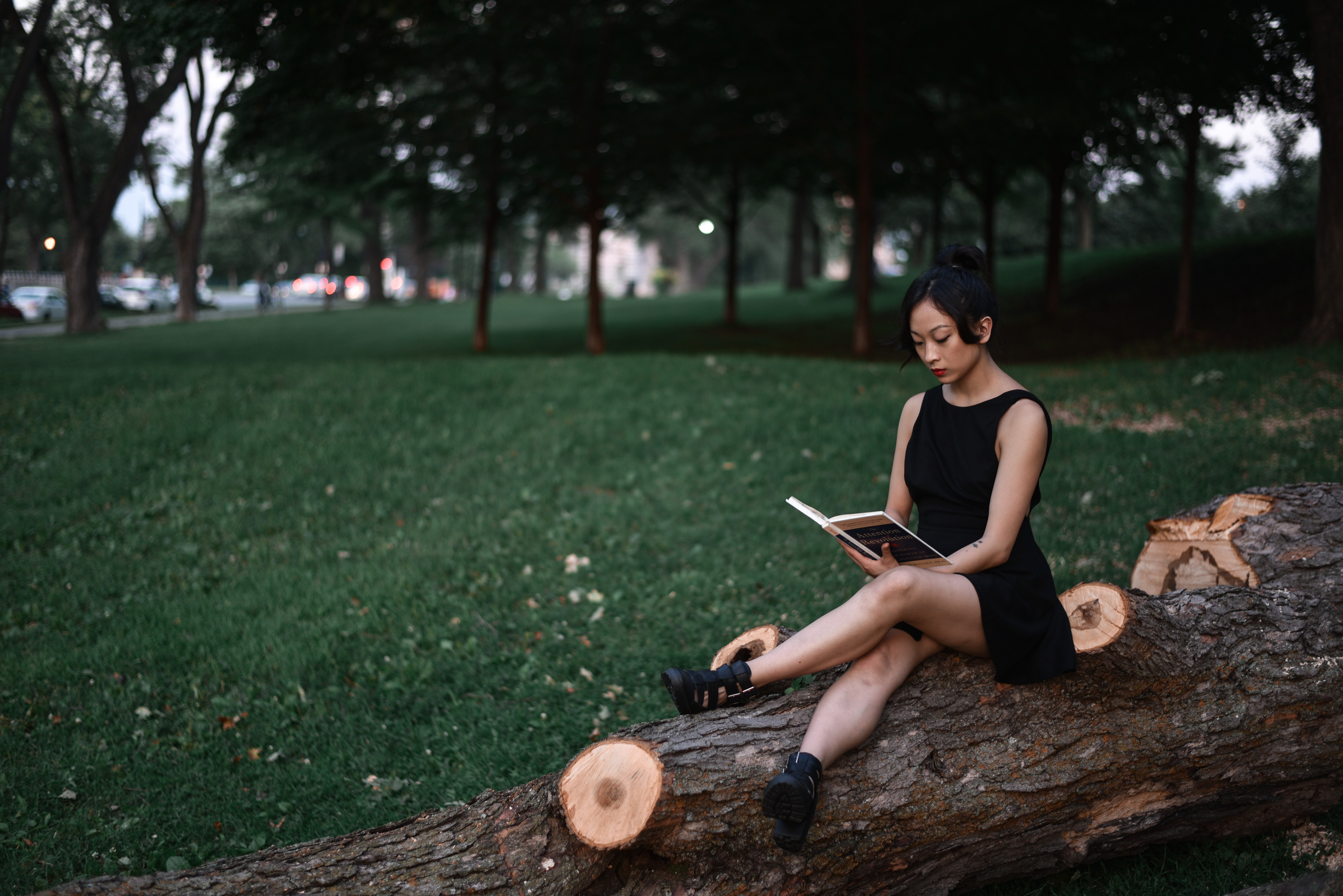 woman reading book while sitting on fallen tree trunk