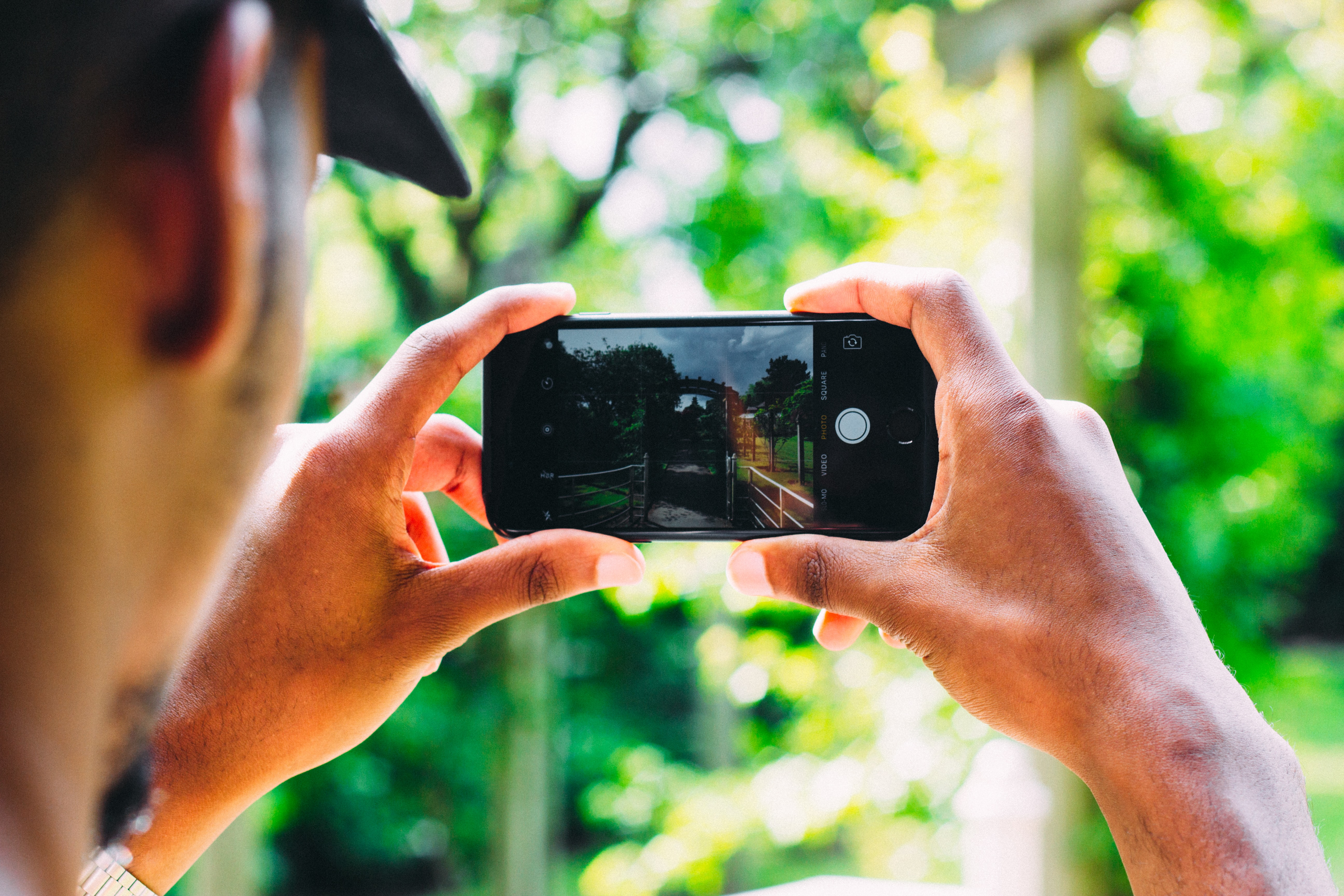 A person holds an iphone in front of him, taking a picture of the woods