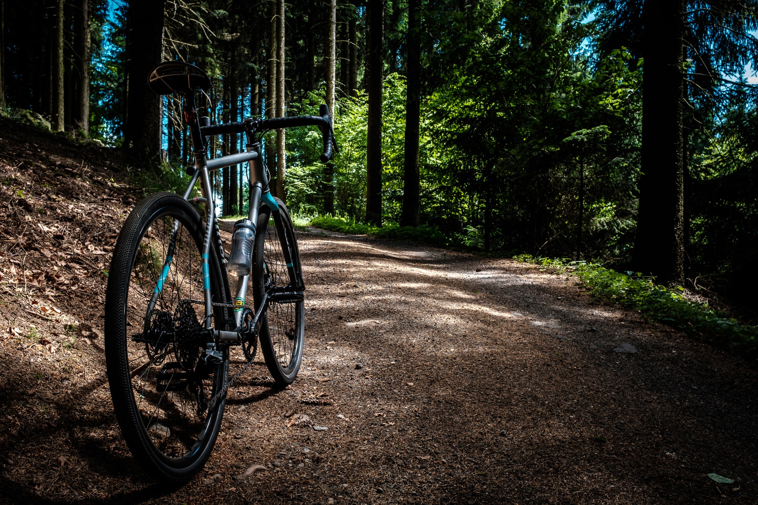 A mountain bike parked on a forest path