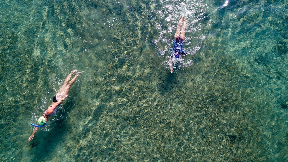 two person swimming on body of water